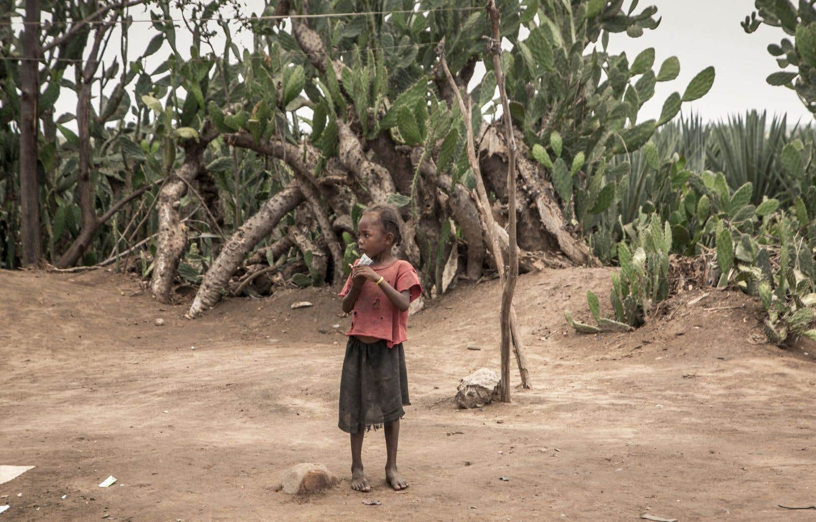 Depuis plusieurs saisons, les régions du sud de Madagascar sont touchées par une sécheresse, et l'eau se fait de plus en plus rare.