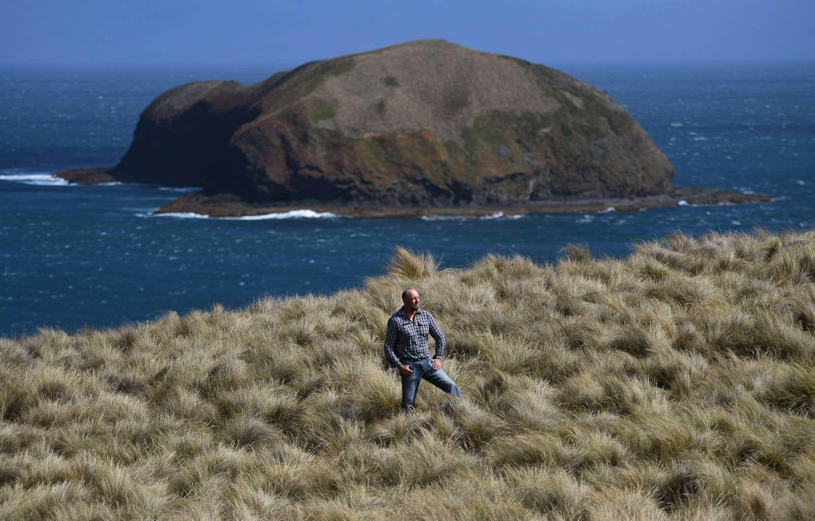 La péninsule du cap Grim offre des vues spectaculaires, avec ses vastes étendues herbeuses et les eaux cristallines de l'océan Austral.
