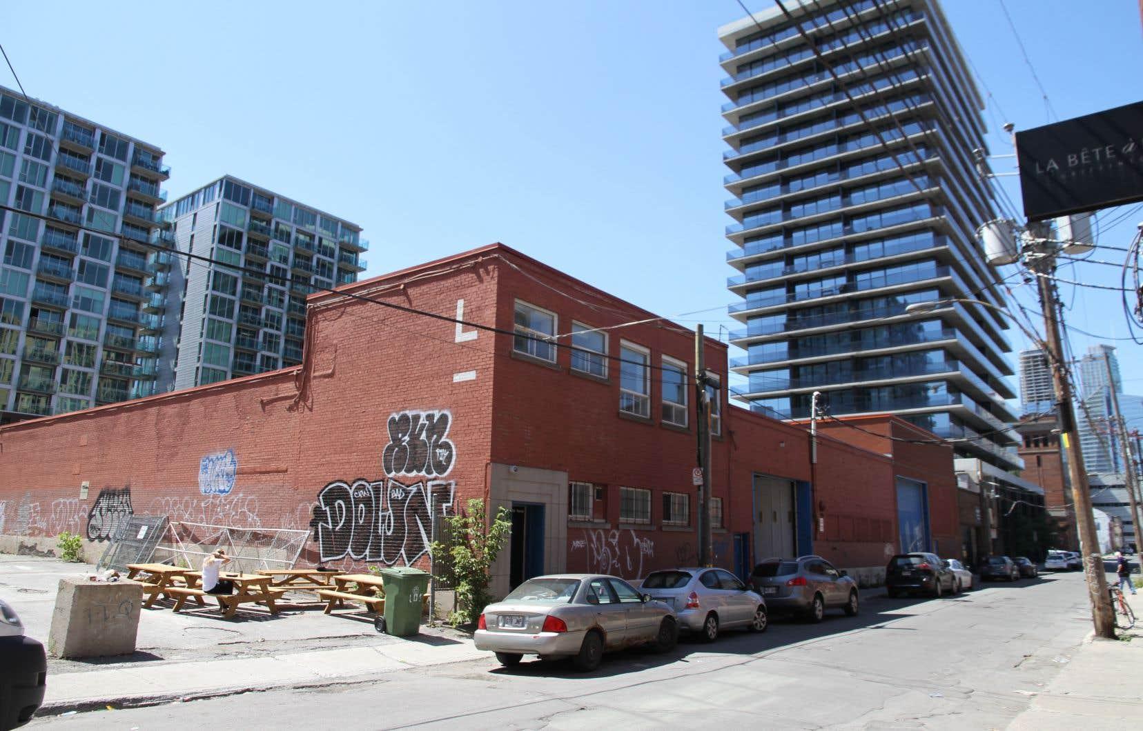 Le projet Young, situé au 204, rue Young dans Griffintown, est le premier projet d'occupation transitoire de Montréal. Celui-ci a été lancé par le Laboratoire transitoire. Il s'agit d'un partenariat entre l'OBNL Entremise, la Ville de Montréal, la Maison d'innovation sociale et Cities for People de la Fondation McConnell.