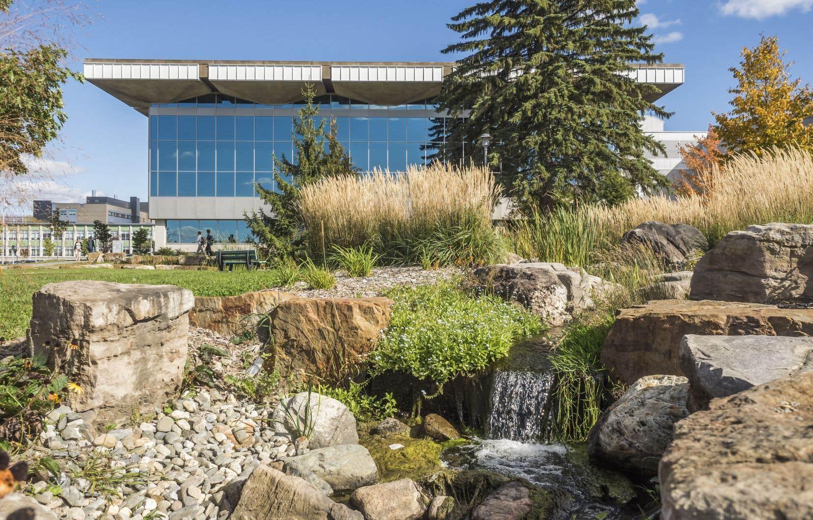 L'Université de Sherbrooke multiplie les initiatives vertes.