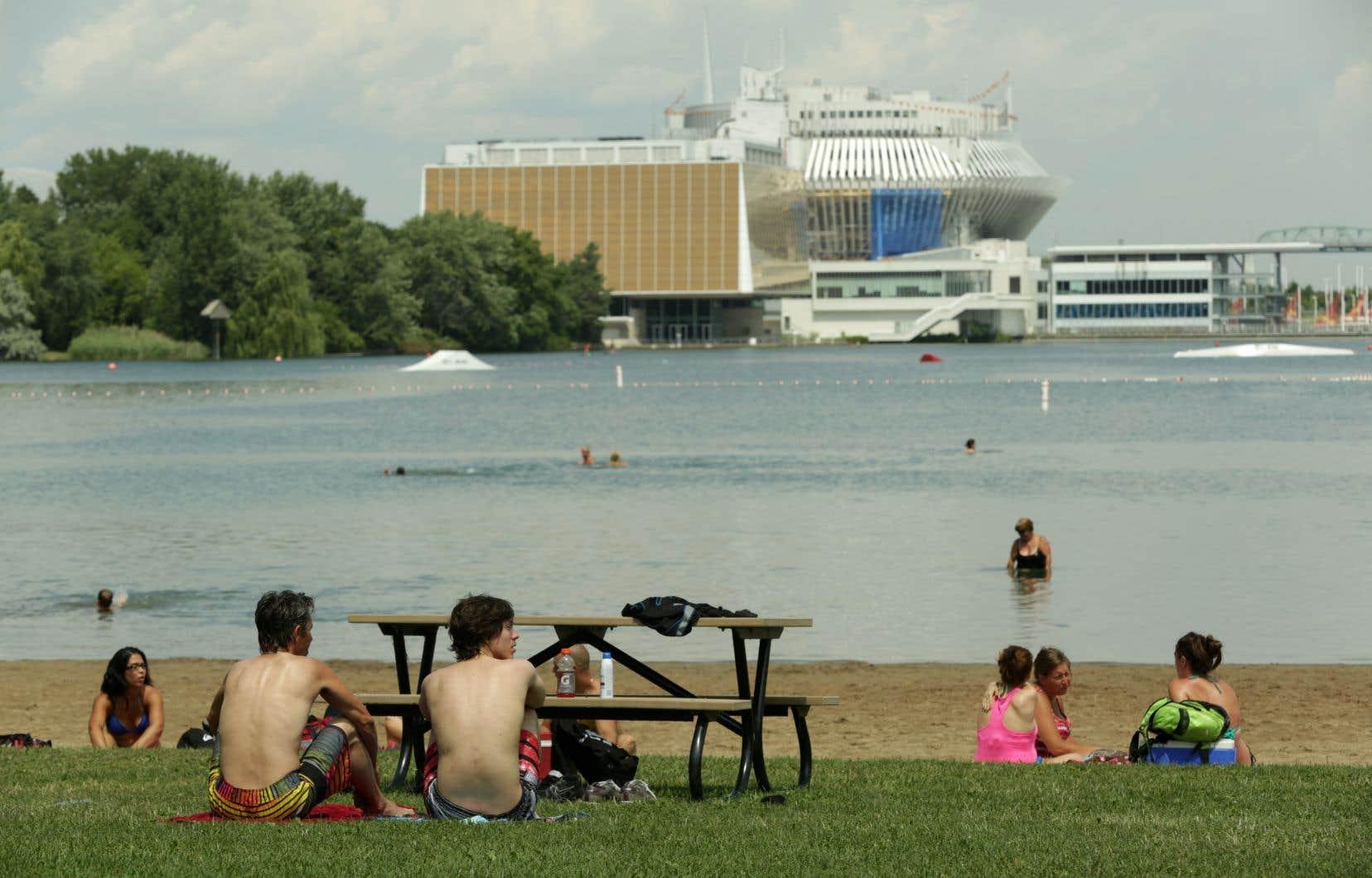 Le rapport de l'Office de consultation publique de Montréal critique la place importante qu'occupent les grands événements dans le parc au détriment des usagers qui cherchent des lieux de détente.