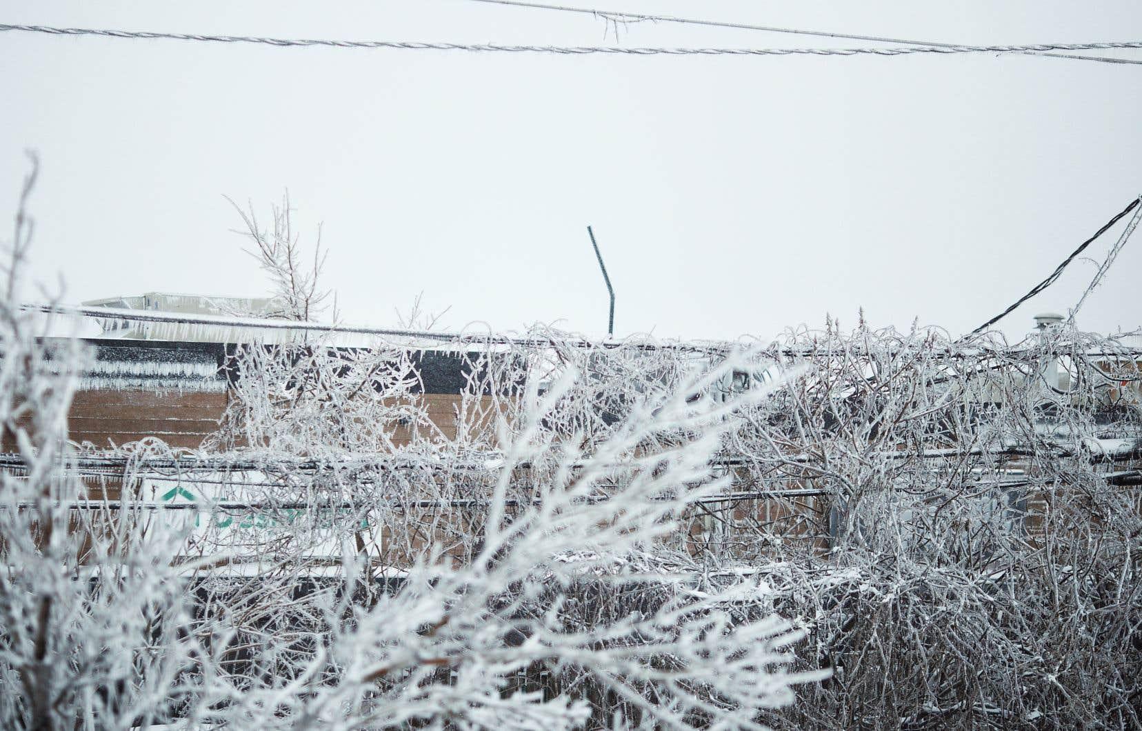 Les villes doivent être en mesure de répondre aux impacts des changements climatiques, qui commencent à se faire sentir, selon la présidente du Comité sur les changements climatiques de l'Union des municipalités du Québec. La province sort d'un hiver durant lequel certaines de ses régions ont eu 17 périodes de gel et dégel aux mois de janvier et février.