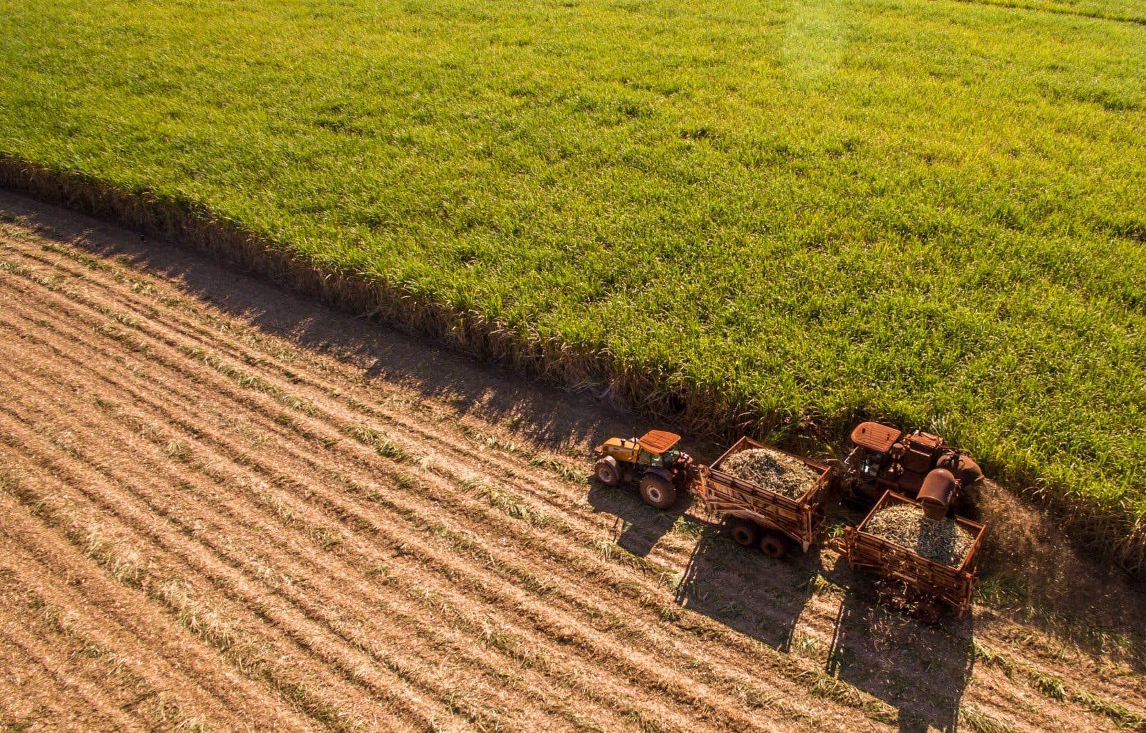 Si le nerf de la guerre a longtemps été la mise en marché des produits agricoles, c'est aujourd'hui la croissance fulgurante des rôles d'évaluation qui menace les producteurs.