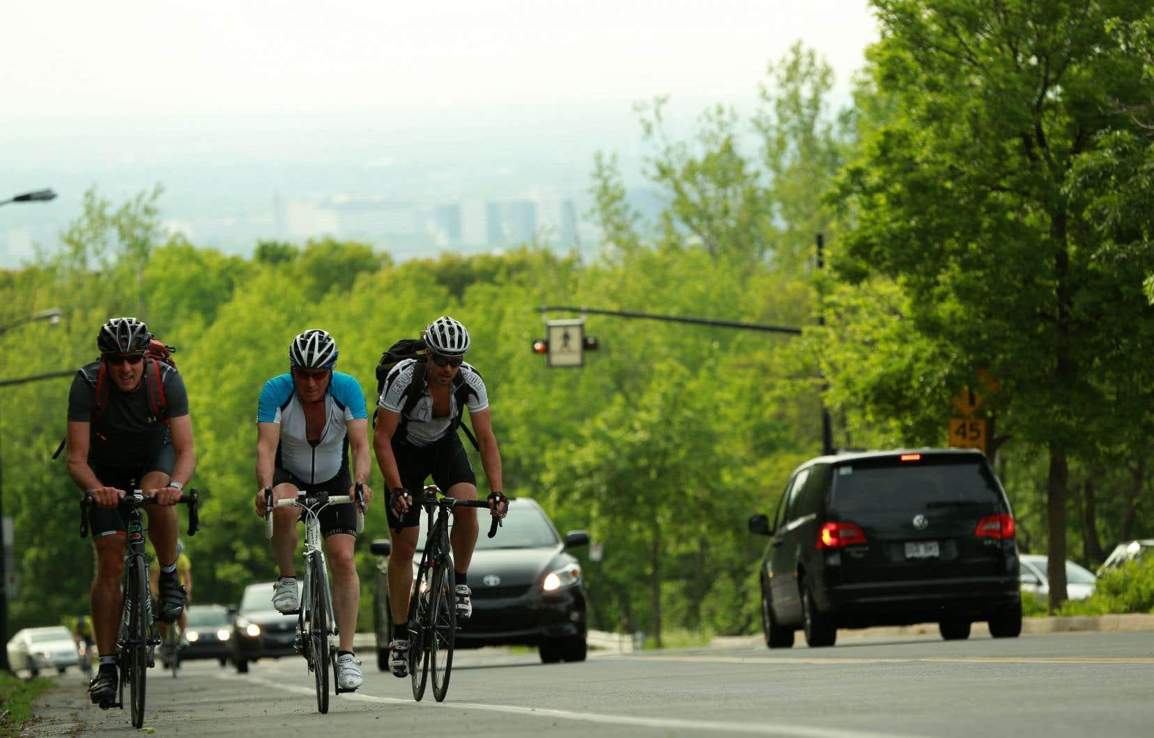Selon l'Office de consultation publique de Montréal, l'accès au belvédère Camillien-Houde devrait être modifié afin que les usagers, qu'ils soient piétons, cyclistes ou automobilistes, puissent y entrer et en sortir de façon sécuritaire.