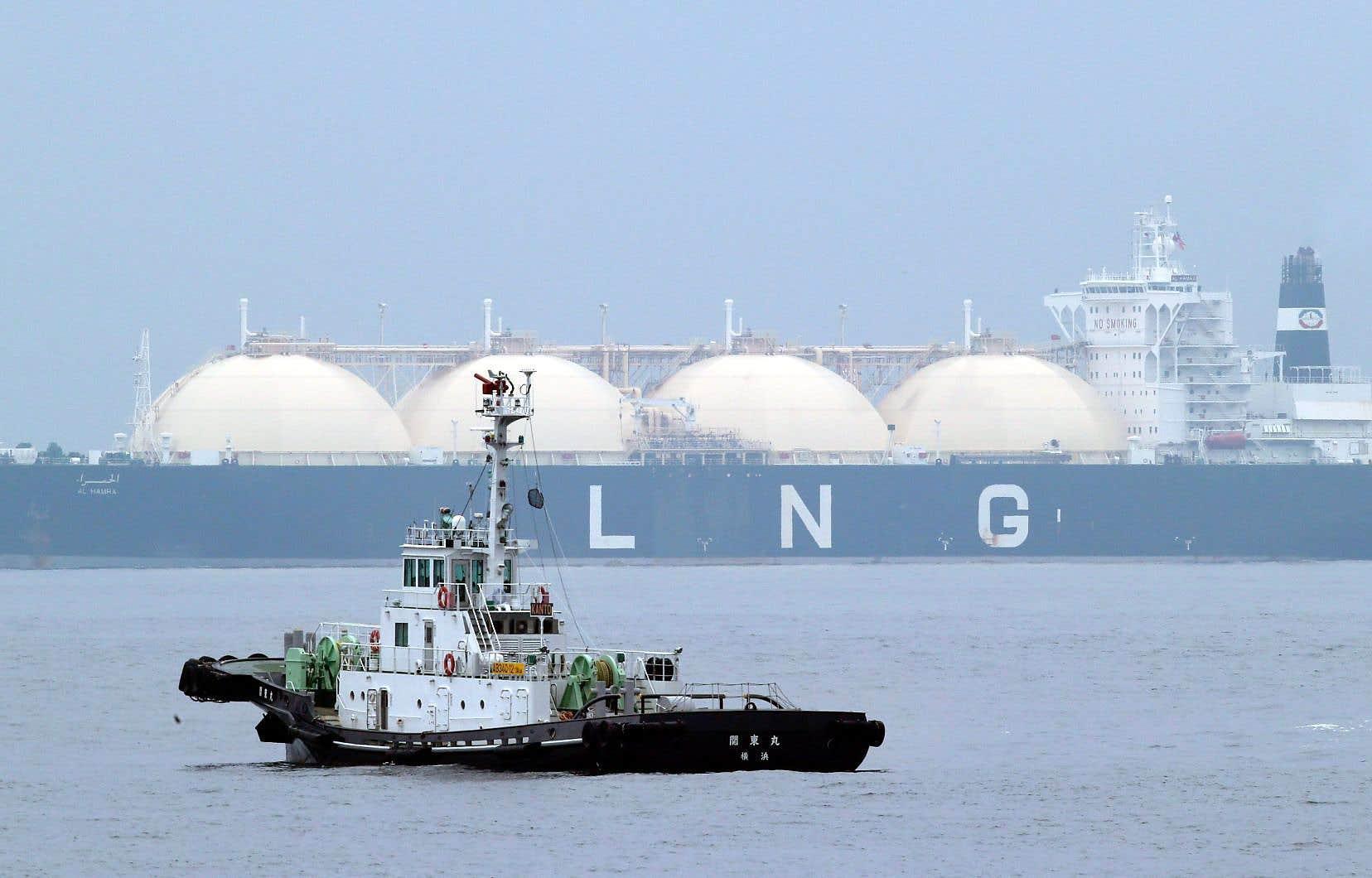 Le gaz naturel liquéfié serait exporté par des méthaniers. Ces navires devraient traverser l'habitat essentiel du béluga du Saint-Laurent, principalement dans les limites du parc marin du Saguenay–Saint-Laurent.
