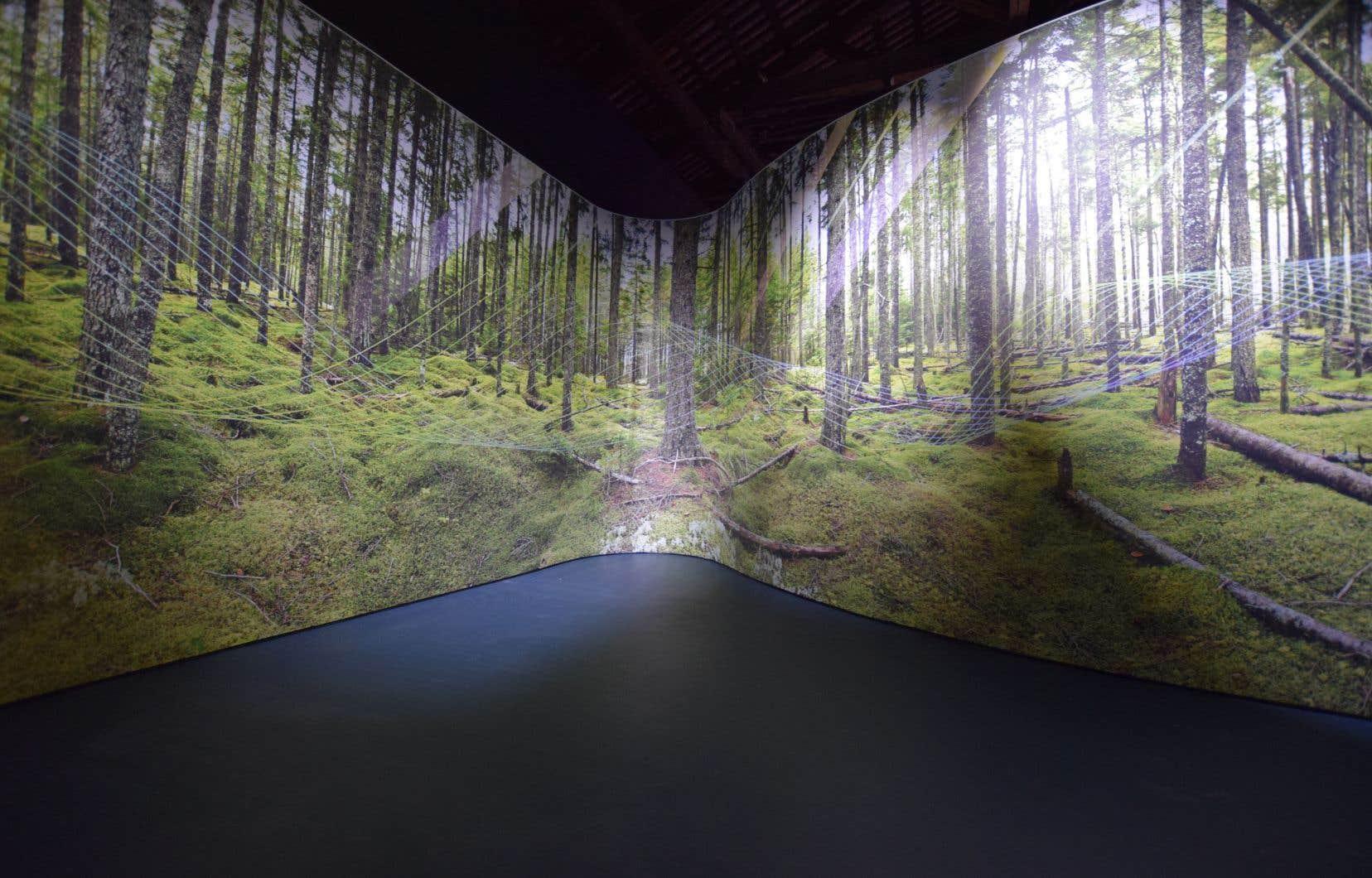 Vue de l'exposition interactive «NON CÉDÉES – Terres en récit»