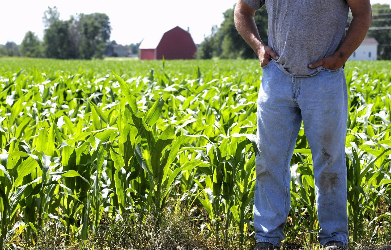 Les producteurs agricoles en font un usage conforme aux règles et aucune menace ne pèse sur la santé publique, affirme Christian Overbeek, ancien président du CEROM.