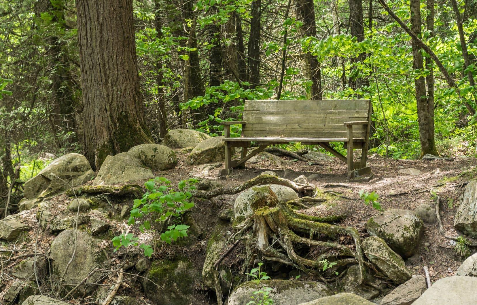 La réserve nationale de faune du Cap-Tourmente, un endroit parfait pour prendre contact avec la nature.