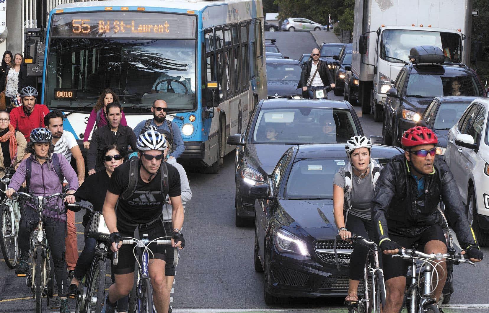 Pour la p.-d.g. de Vélo Québec, Suzanne Lareau, une meilleure cohabitation sur les routes vient de la force du nombre.