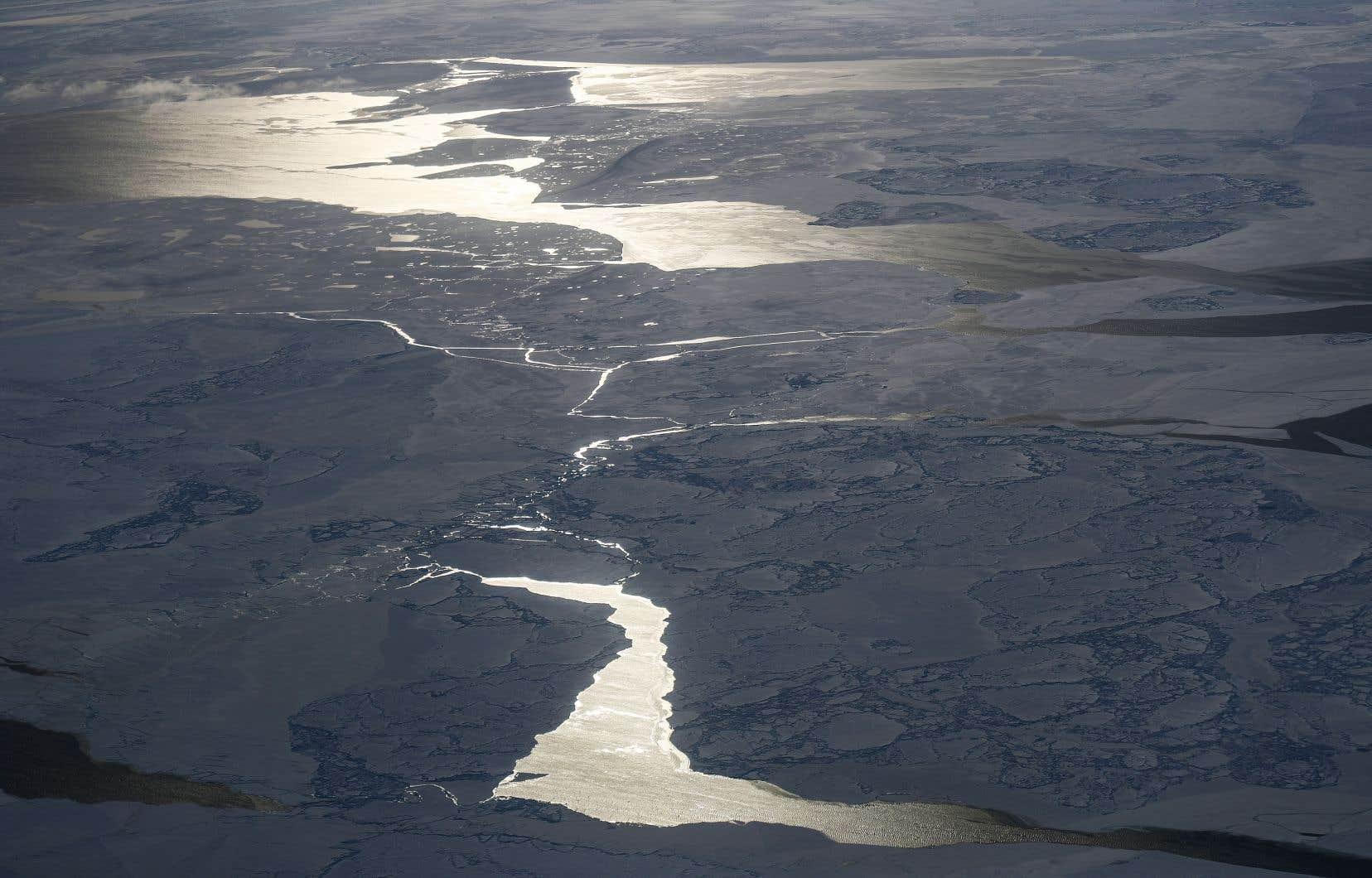 Après des années de retard et de pressions politiques, le Canada a décidé de revendiquer une vaste partie des fonds marins arctiques, y compris le pôle Nord.