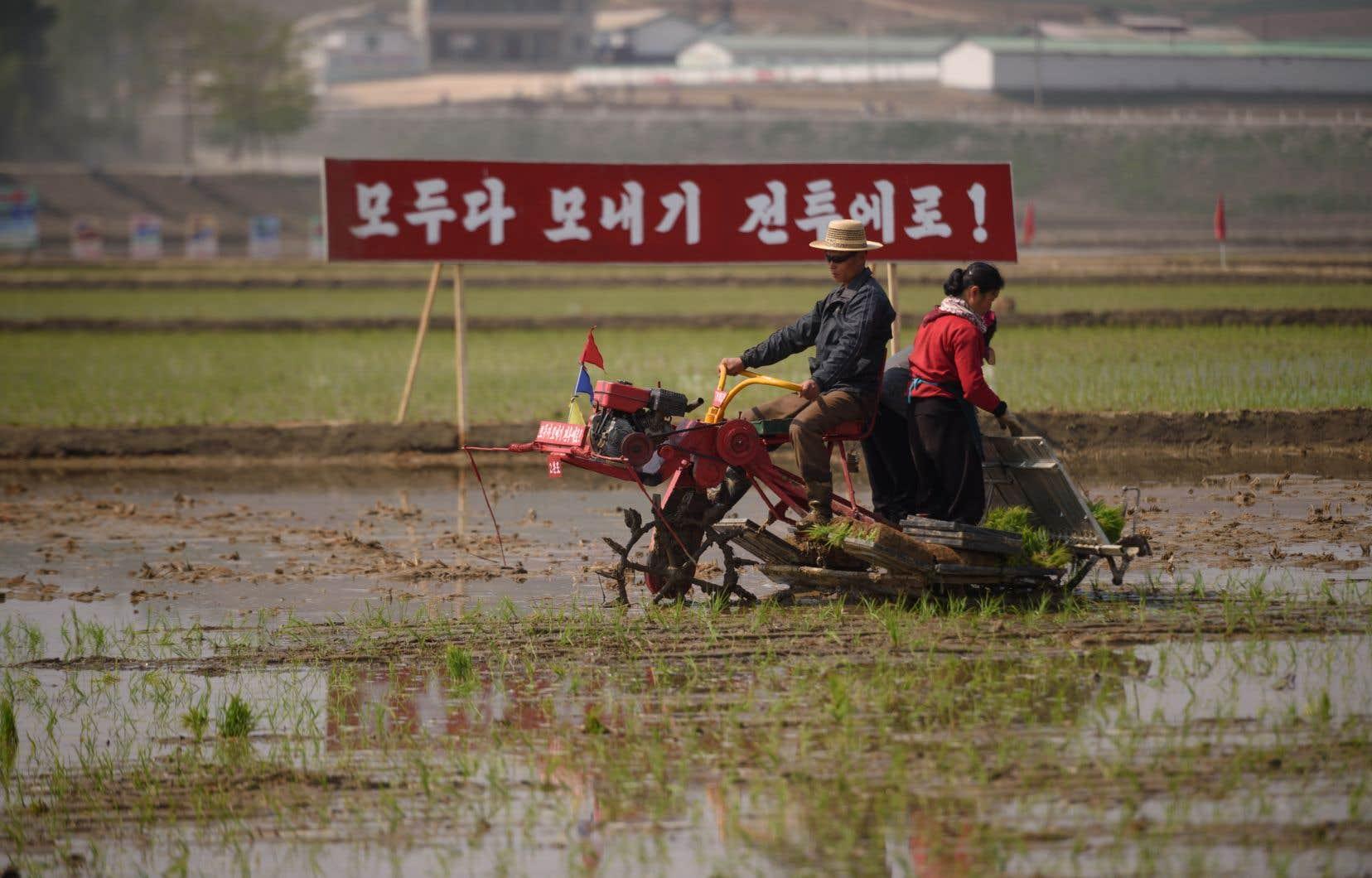 Il s'agit de la première aide de ce type fournie par Séoul à Pyongyang depuis 2015, alors que le Nord a eu les plus mauvaises récoltes depuis une décennie.