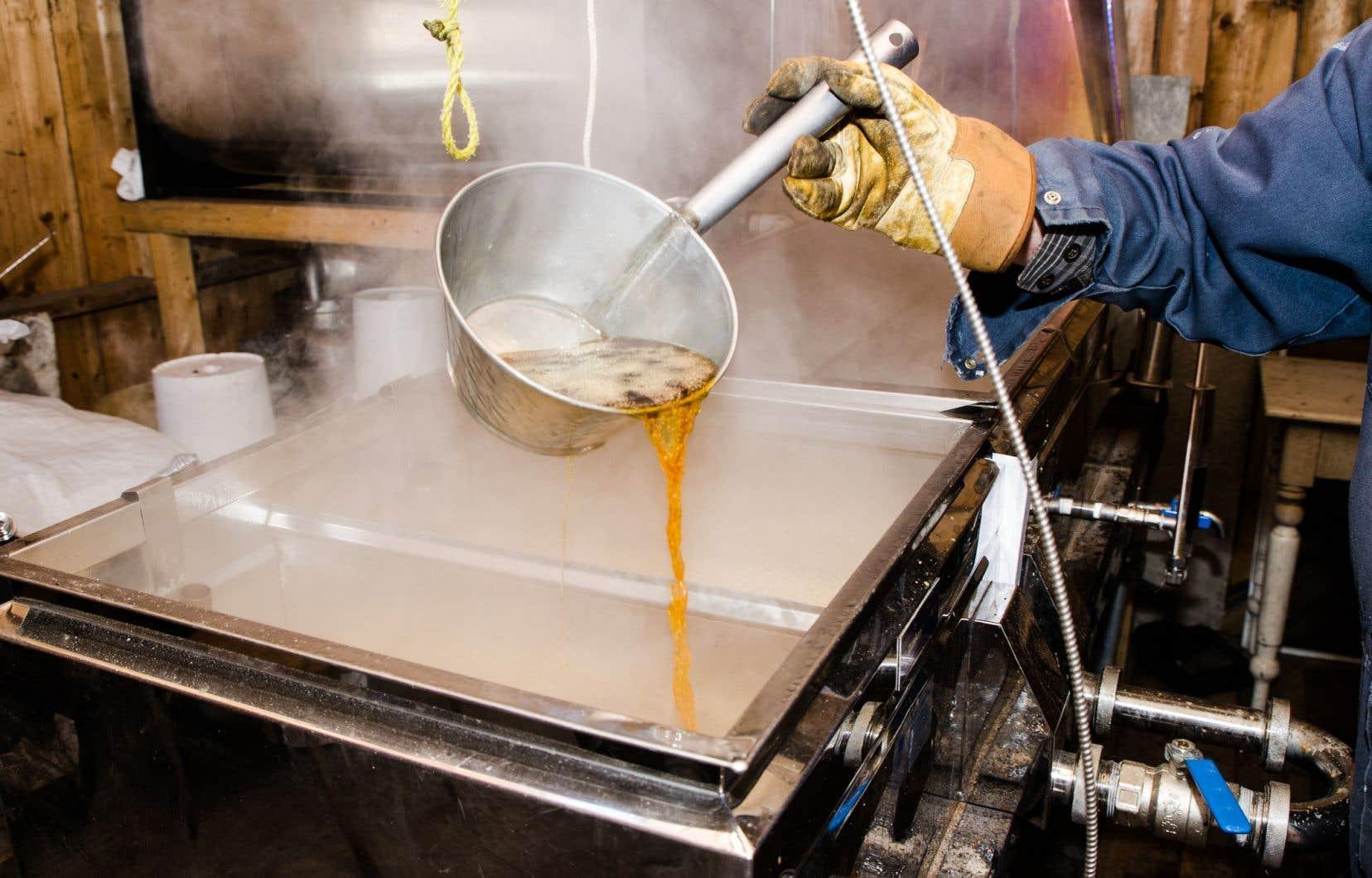 Selon une étude du Club d'encadrement technique en acériculture de l'Est-du-Québec, on utiliserait en moyenne plus d'un demi-litre de pétrole par litre de sirop d'érable produit.