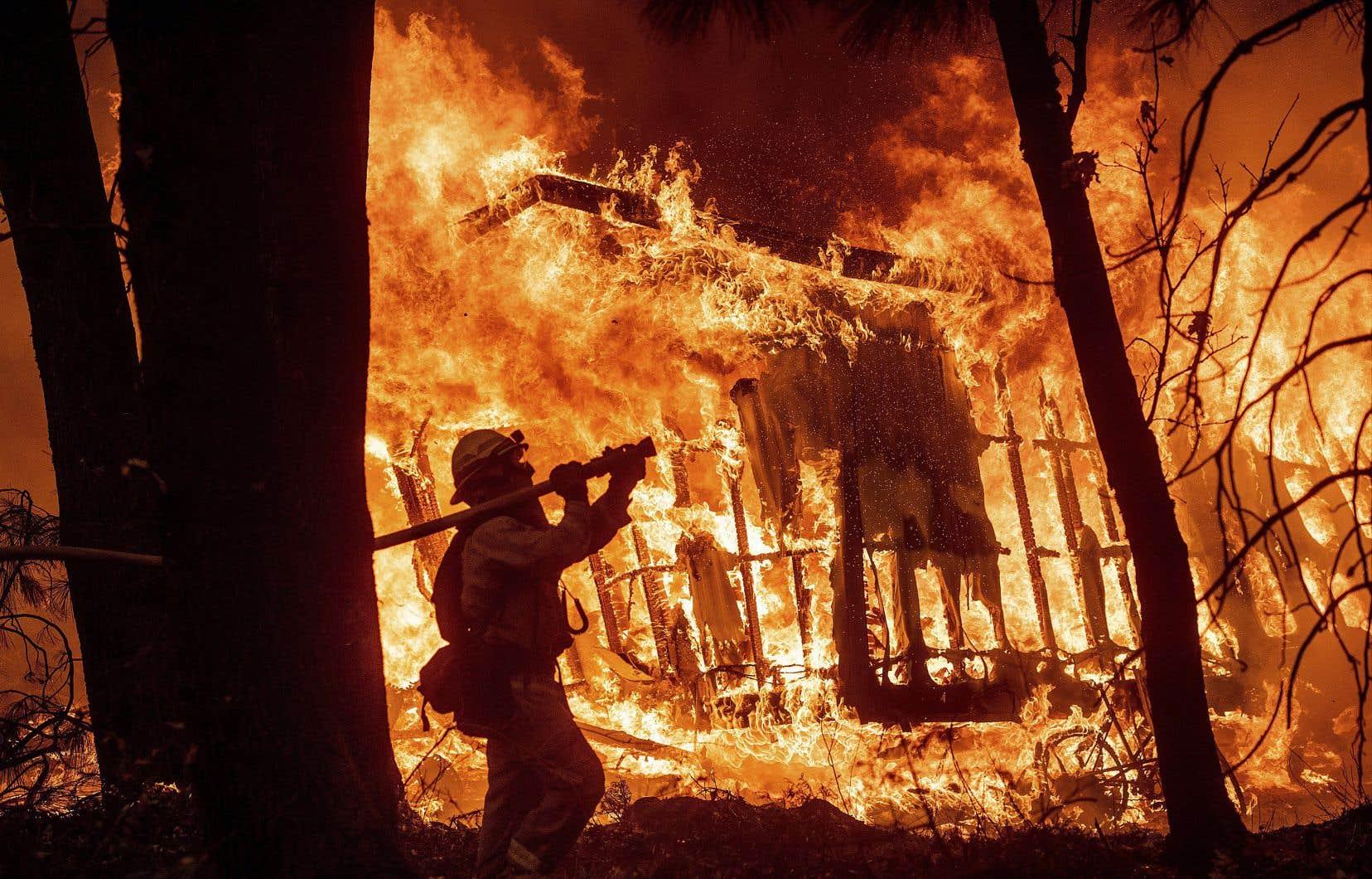 La multiplication des incendies de forêt, notamment en Californie, cause des dégâts considérables pour l'économie américaine.