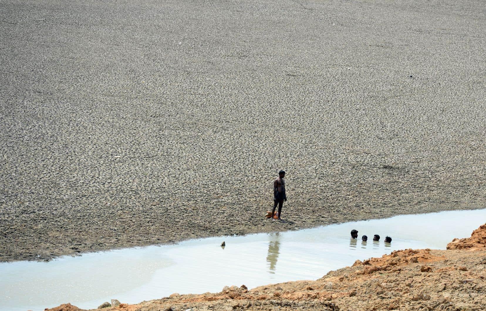 Dans le district de Gaya,le plus durement touché, les autorités ont interdit aux habitants de sortir pour tout travail non essentiel.