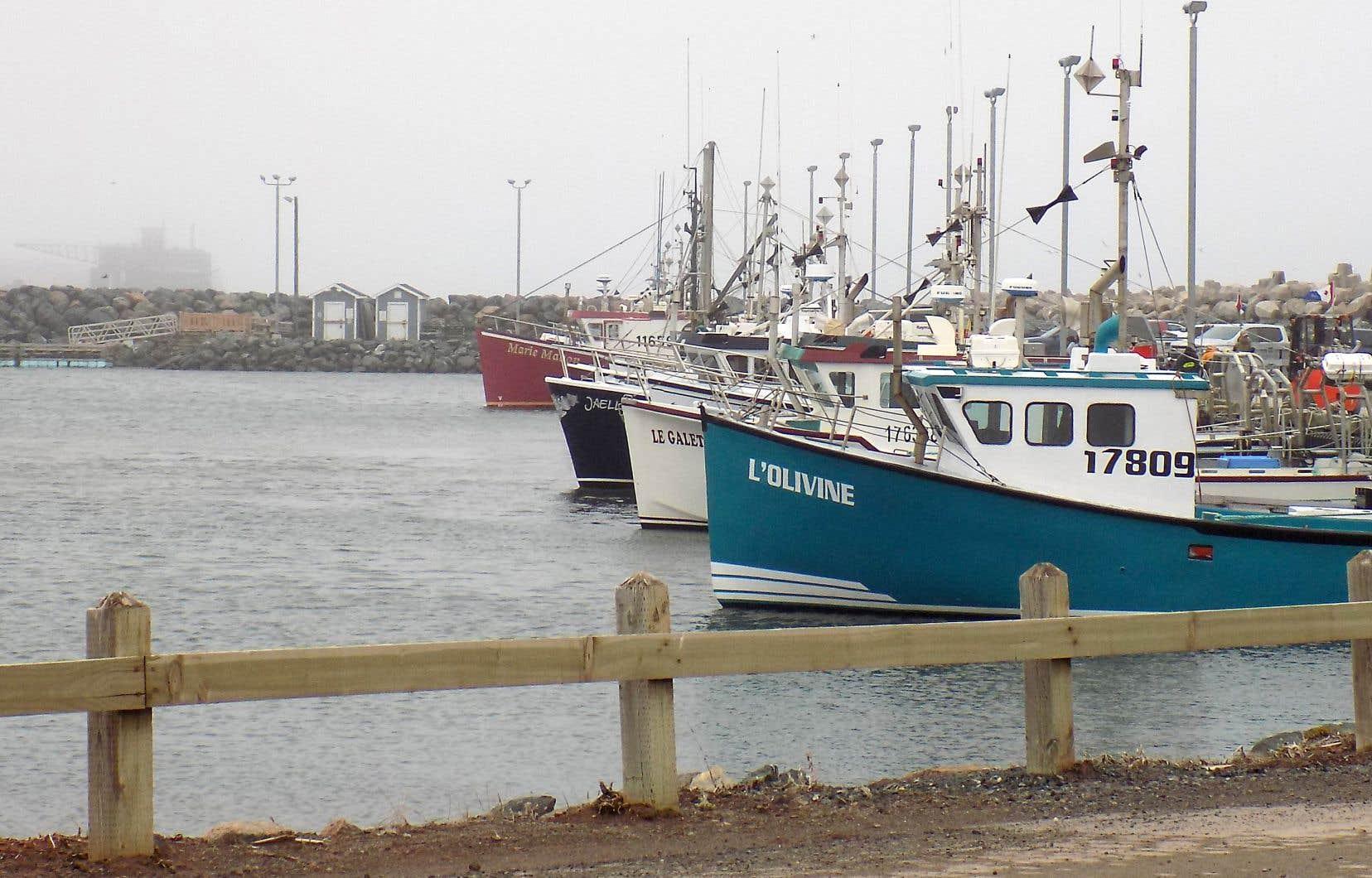 Port de pêche de L'Étang-du-Nord, sous la pluie