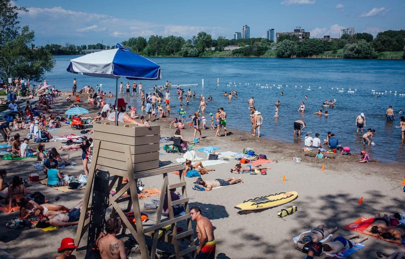 Des dizaines de Montréalais ont décidé d'écouler leur après-midi les deux pieds dans l'eau, dimanche, à la plage de Verdun.