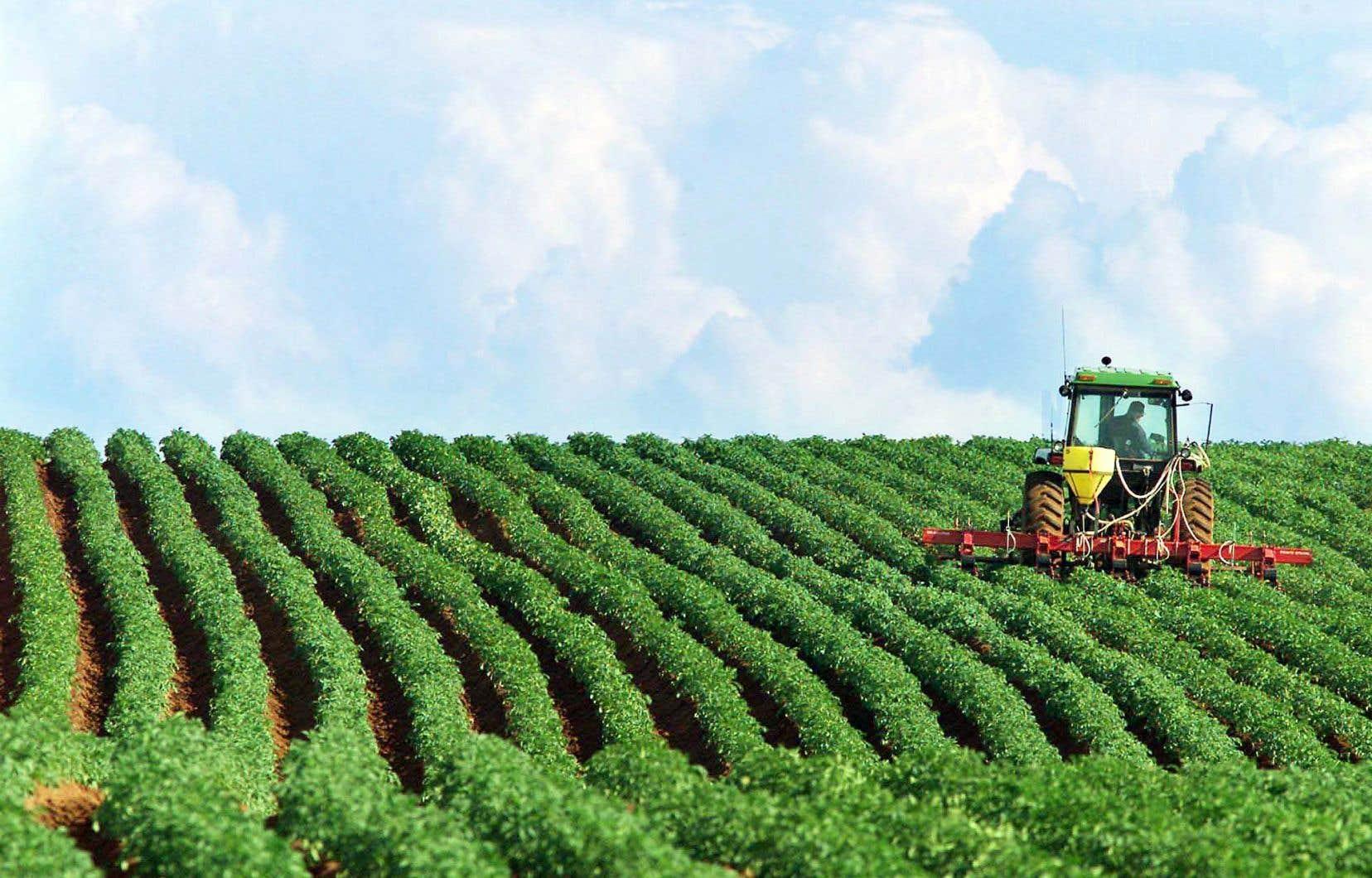 La Commission européenne indique au «Monde» avoir entamé un travail de «réflexion» en septembre 2017 sur la manière d'aménager des marges de «tolérance à l'importation» à ces pesticides intrinsèquement dangereux que le nouveau règlement prévoit de bannir.