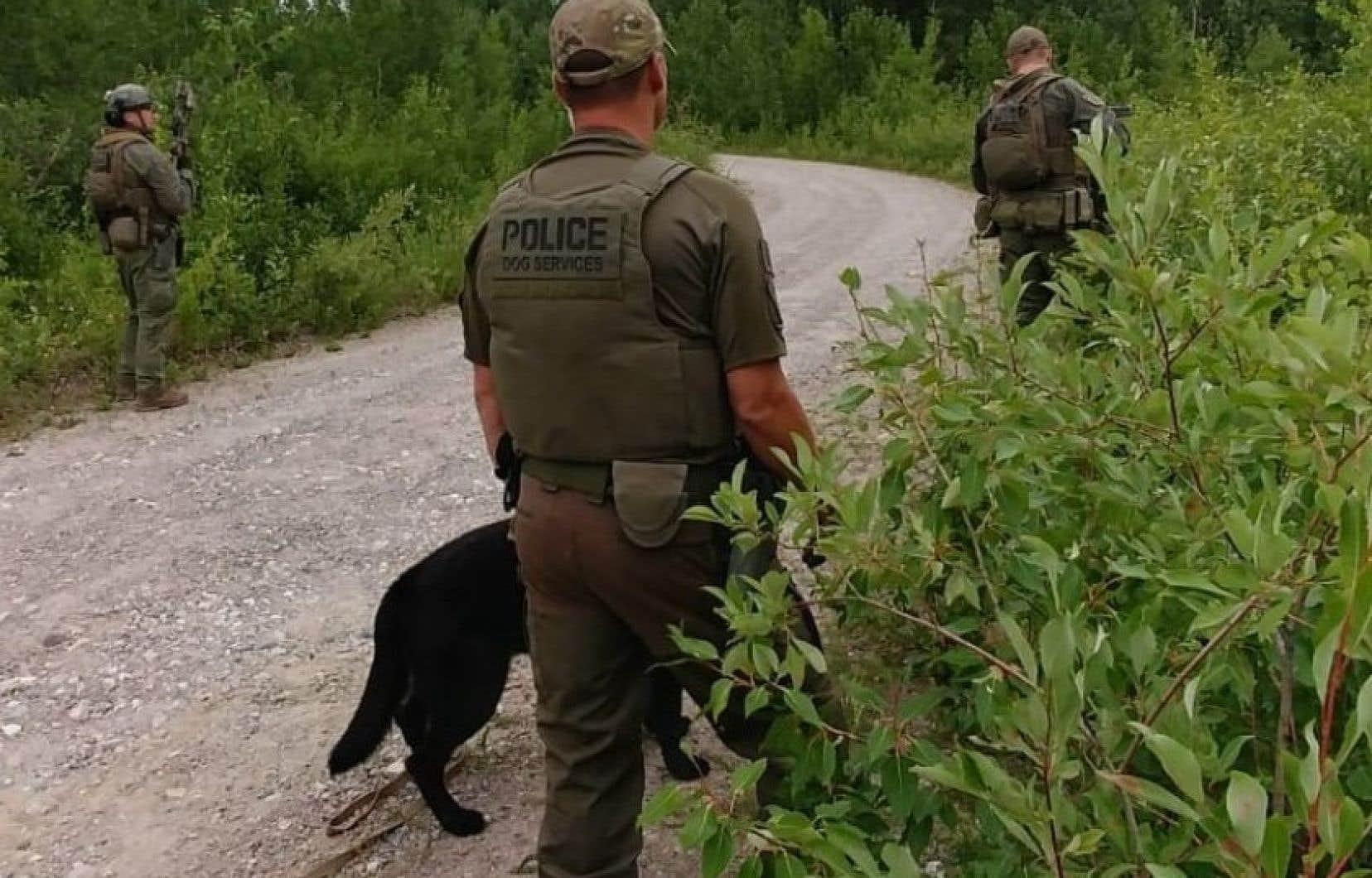 Des policiers effectuent des fouilles à pied avec des chiens pour retrouver les deux adolescents dans la région de Gillam, au Manitoba.