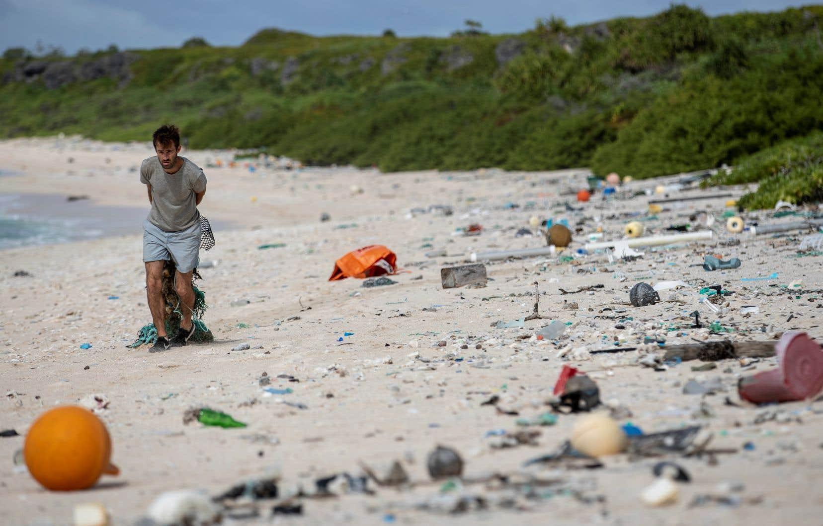 Un membre d'une équipe de nettoyage ramasse des déchêts sur une plage de l'île Henderson.