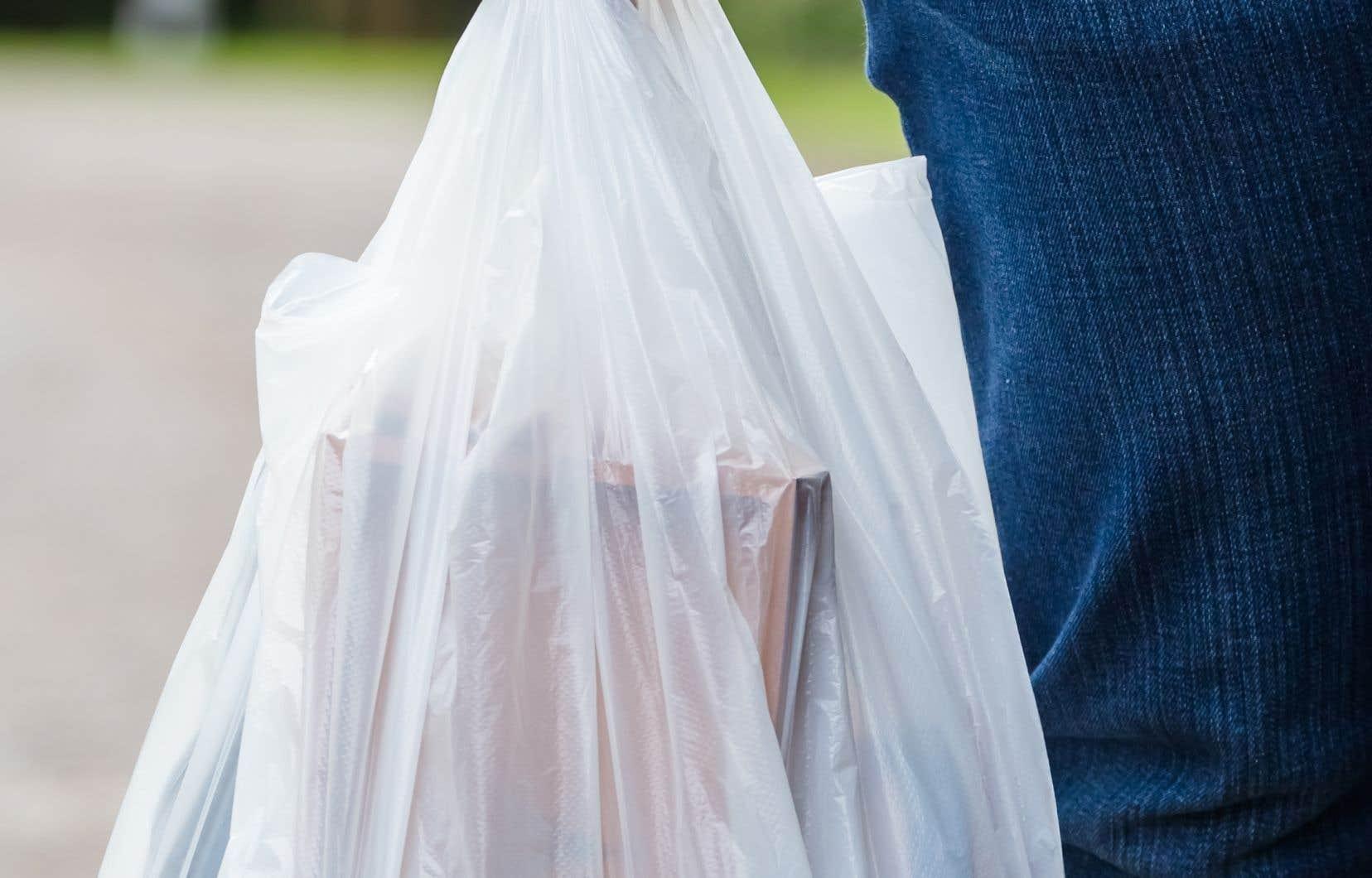 Sobeys passera rapidement à l'élimination progressive des sacs en plastique et à l'introduction des sacs en papier dans toutes ses bannières à l'échelle nationale.