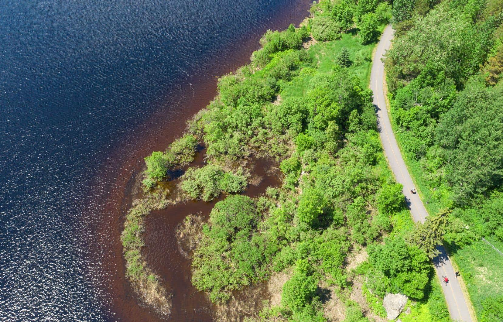 Si les différentes emprises de la Véloroute des bleuets relèvent des 16 municipalités autour du lac, celles-ci en ont cédé la coordination à un comité intermunicipal, qui en assure la gestion.