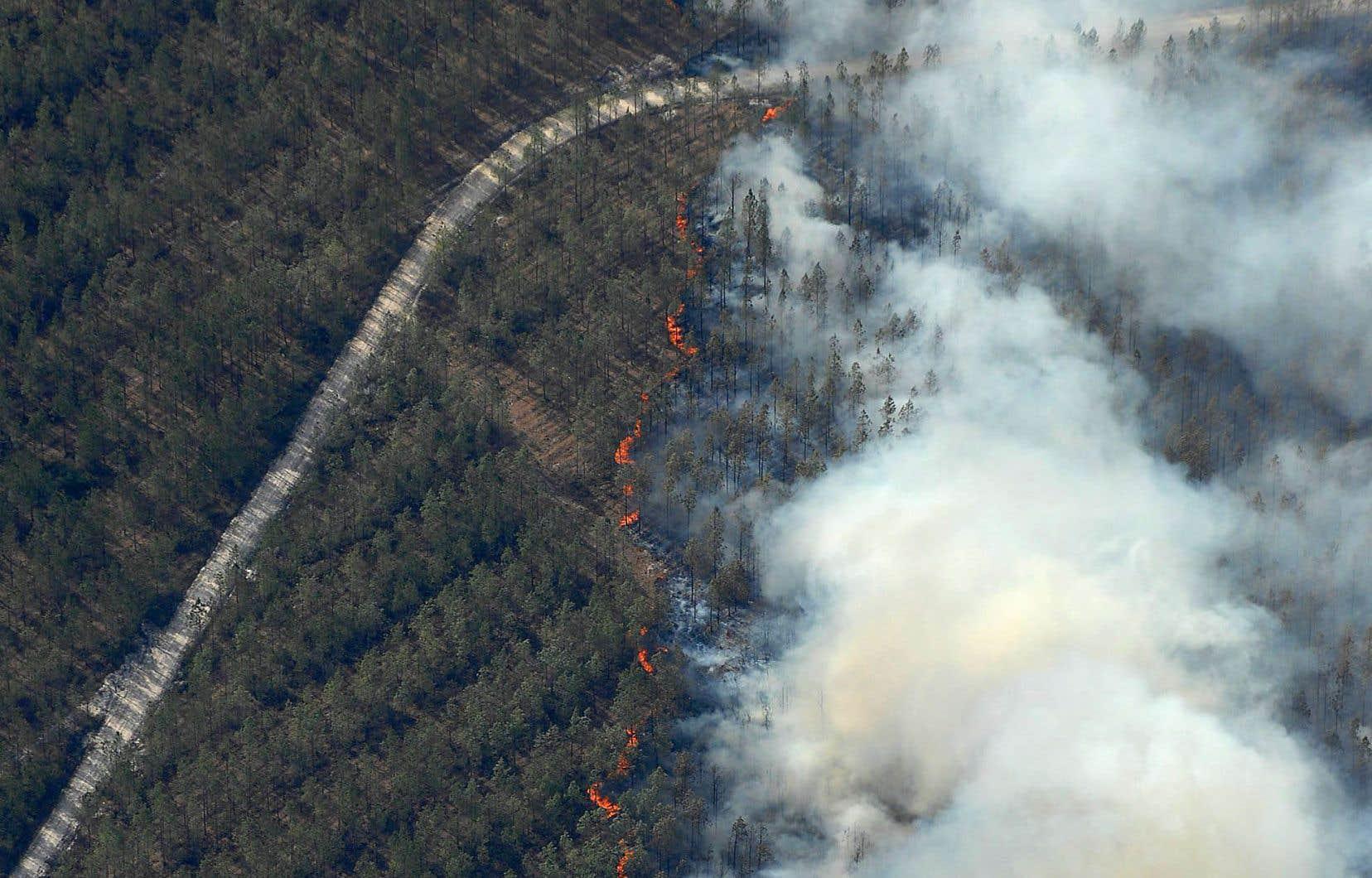 «Le taux d'incendies de forêt dans la partie ouest [du Nord du Québec] représente près de 2,5% du territoire par année, en moyenne. Ça semble peu, mais ça veut dire qu'en moyenne, chaque point de territoire passe au feu tous les 40ans», souligneDominique Arsenault.