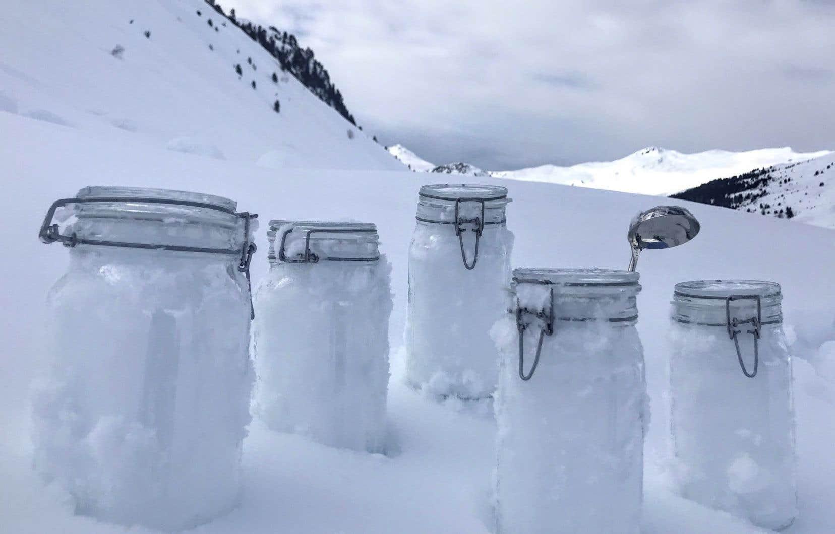 Les chercheurs ont examiné des échantillons de neige prélevés dans certaines des régions les plus reculées de la planète, dont les Alpes suisses.