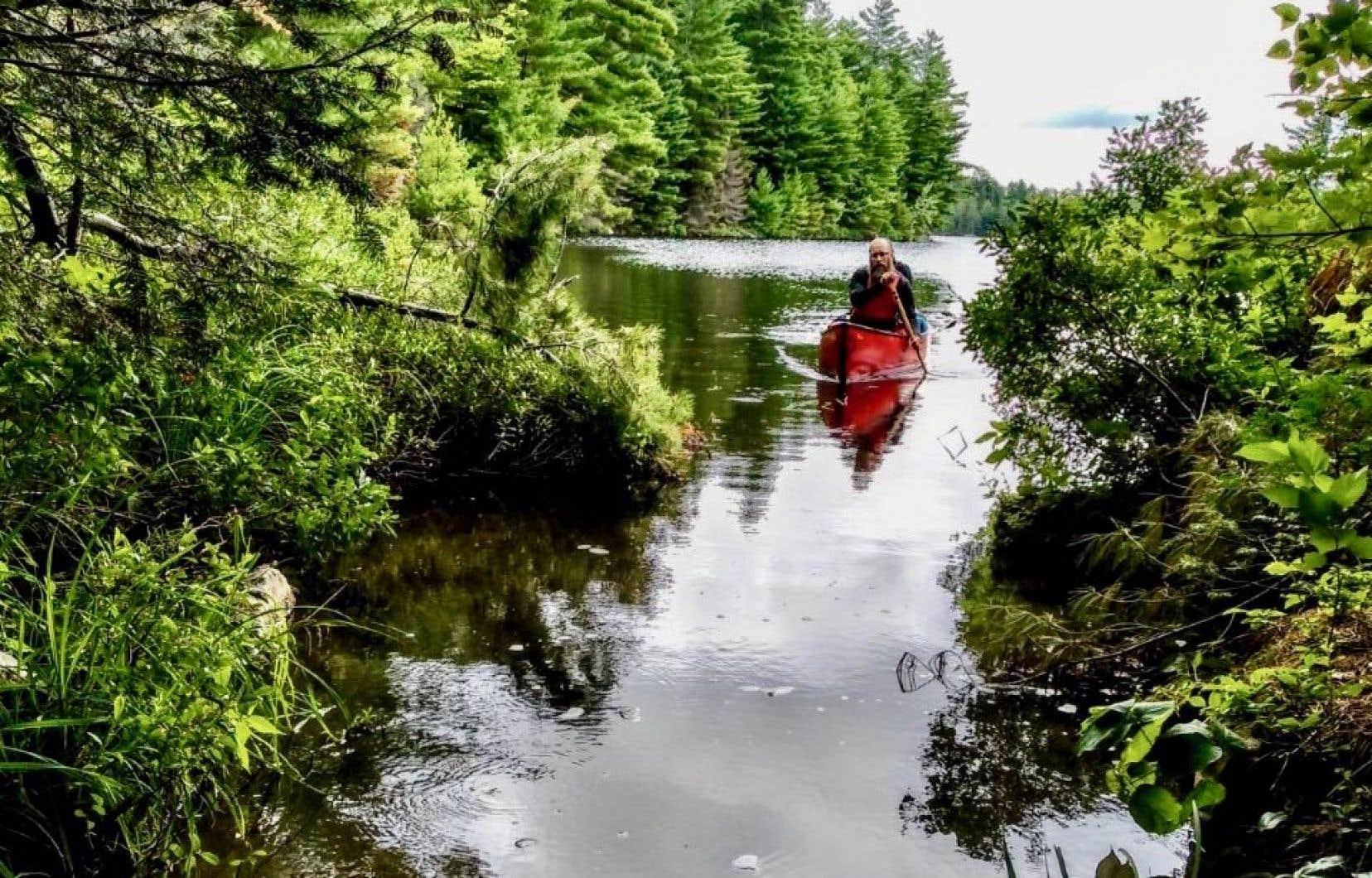 Pour atteindre le lac White, il faut enchaîner un dédale de petits lacs jusqu'à un portage d'environ 200 mètres qui ondule sur une passerelle de bois.