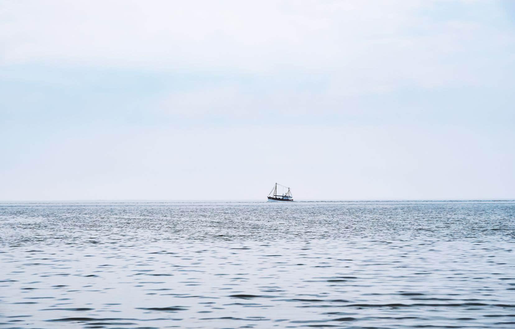 Un accord mondial pourrait sceller le sort de plusieurs espèces et fonds marins en danger et l'avenir de la biodiversité dans les eaux situées en haute mer.