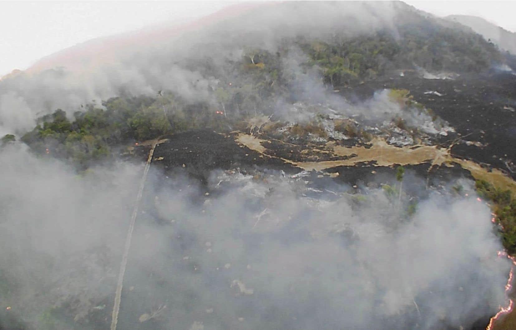 L'Institut national de recherche spatiale du Brésil, une agence fédérale qui surveille notamment la déforestation et les feux de forêt, a déclaré que le pays a connu cette année un nombre record de feux de forêt.