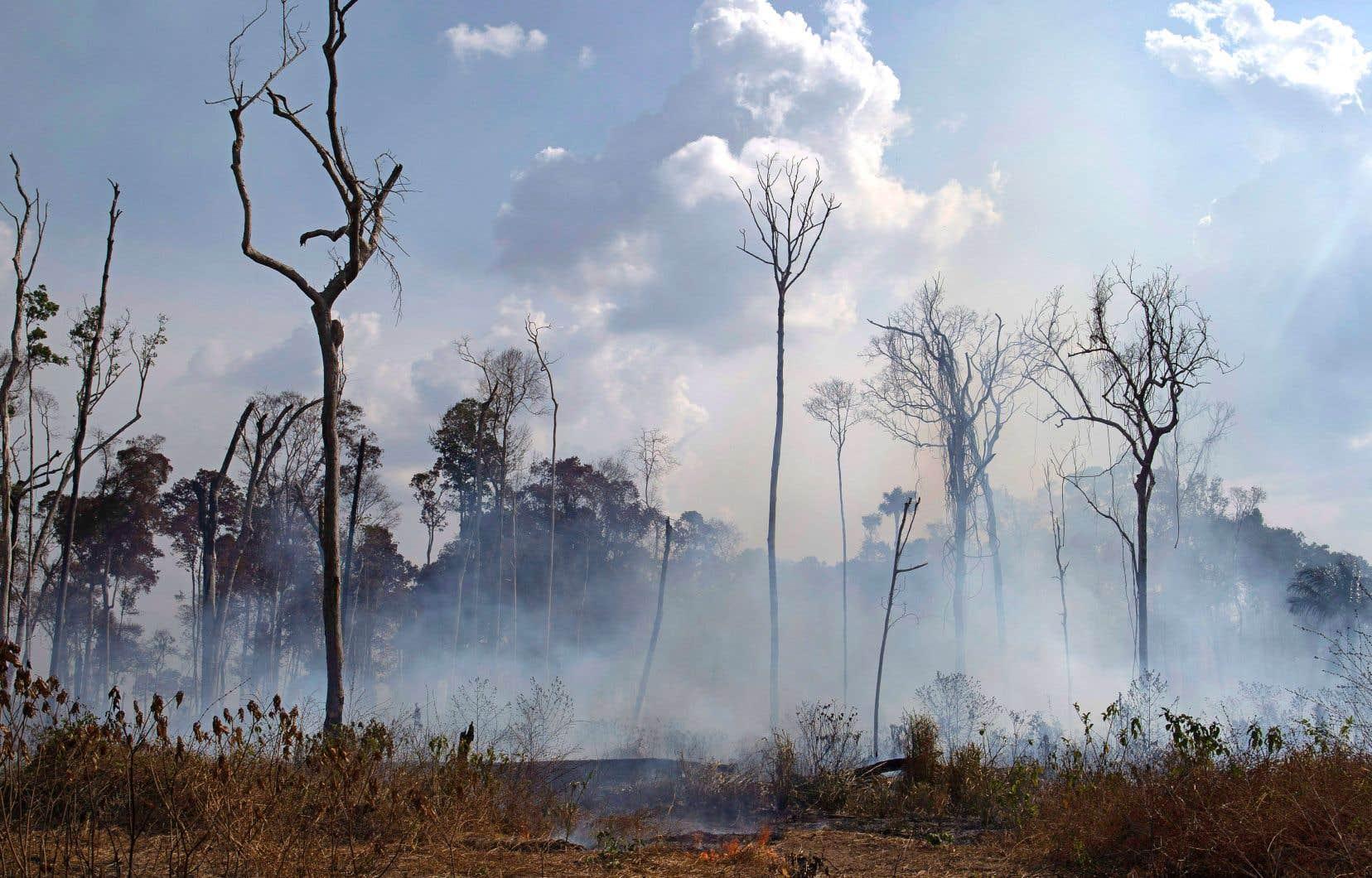 Le président Jair Bolsonaro a finalement annoncé vendredi qu'il enverrait 44000 soldats pour aider à lutter contre les incendies.