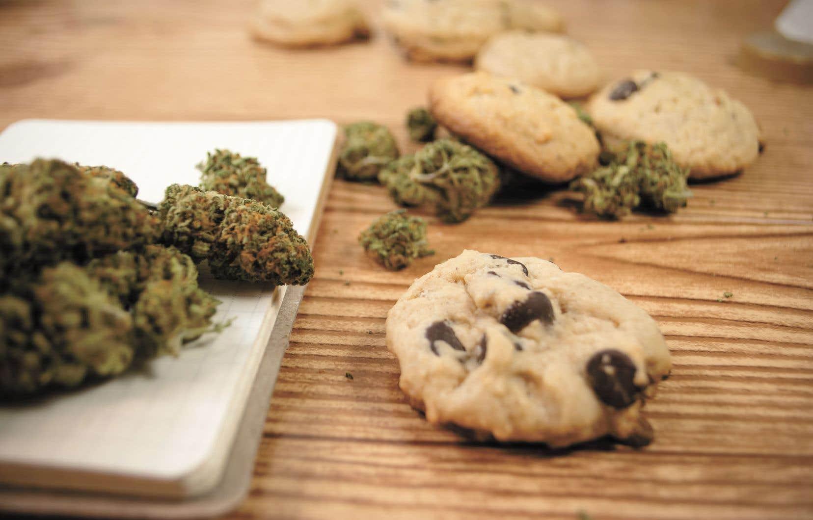 """Résultat de recherche d'images pour """"comestible cannabis"""""""