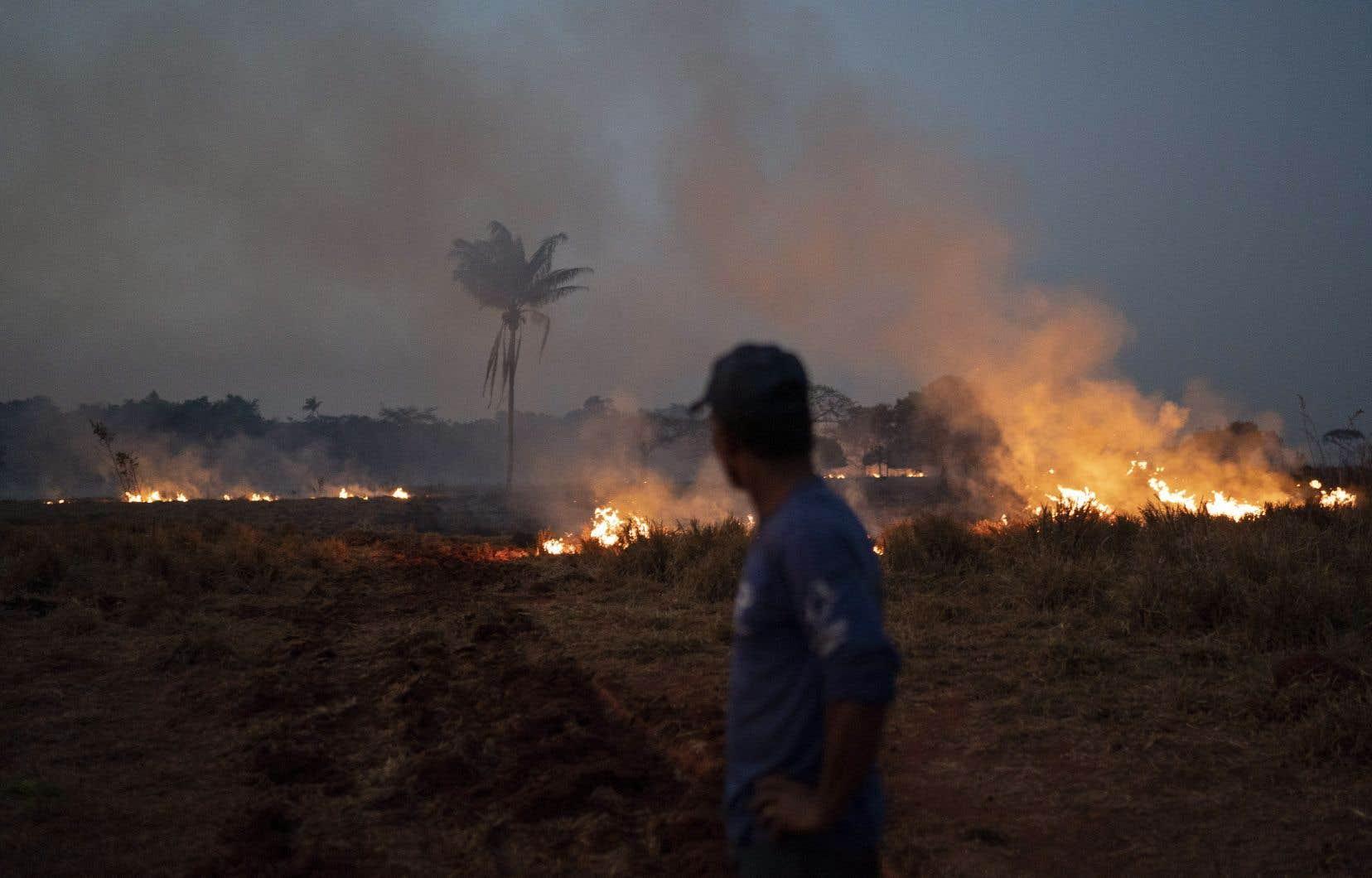Les causes de la destruction en cours de l'Amazonie attestent de mises à feu délibérées pour élargir les zones de culture.