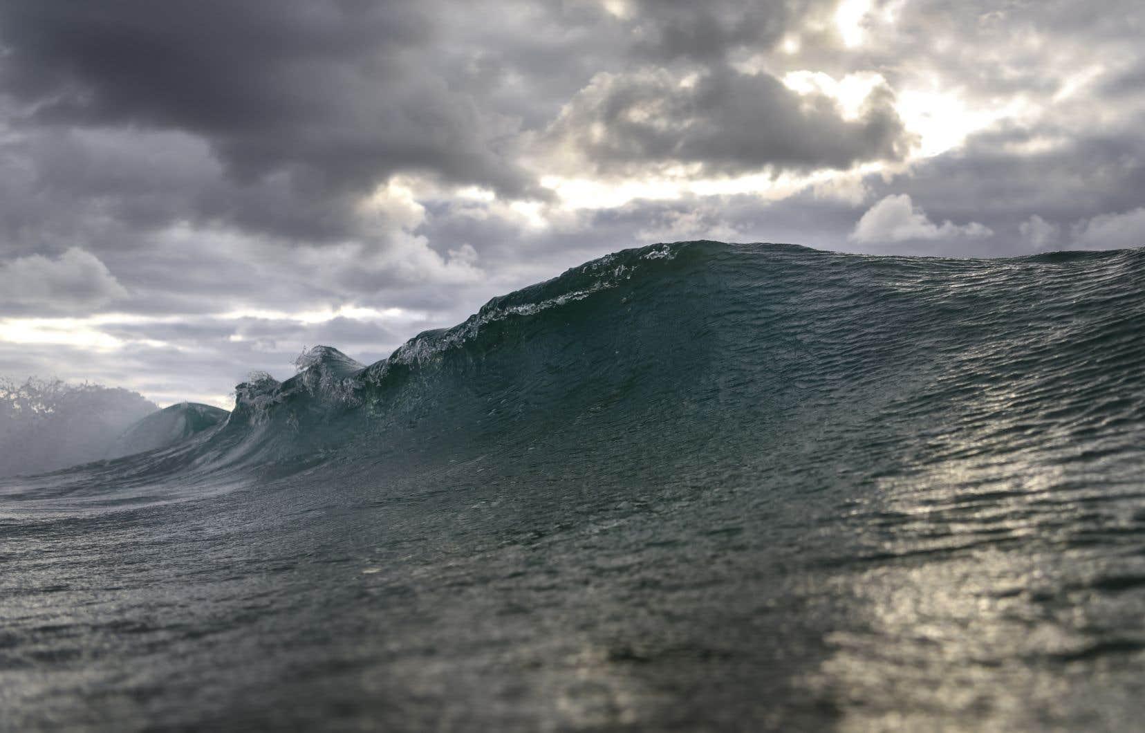 Greenpeace a dénoncé l'absence d'ambition de plusieurs États, malgré l'urgence climatique et la perte de biodiversité auxquelles font face les océans.