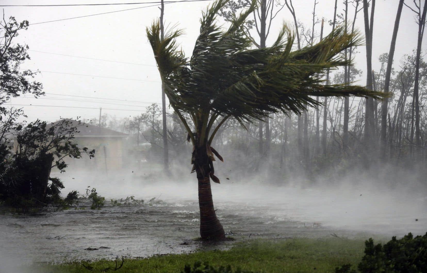 Rues inondées, toitures emportées, arbres déracinés: les premières images donnent une idée de la violence de la tempête en cours.