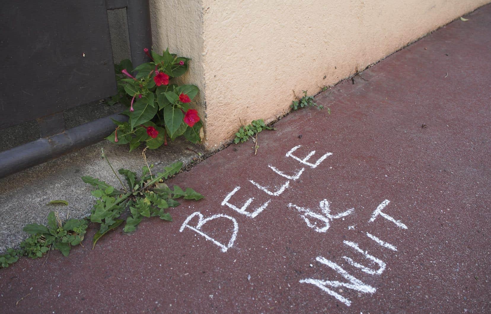 Tout en respectant la rigueur scientifique, les deux graffiteurs de Toulouse ont voulu rendre la botanique accessible.