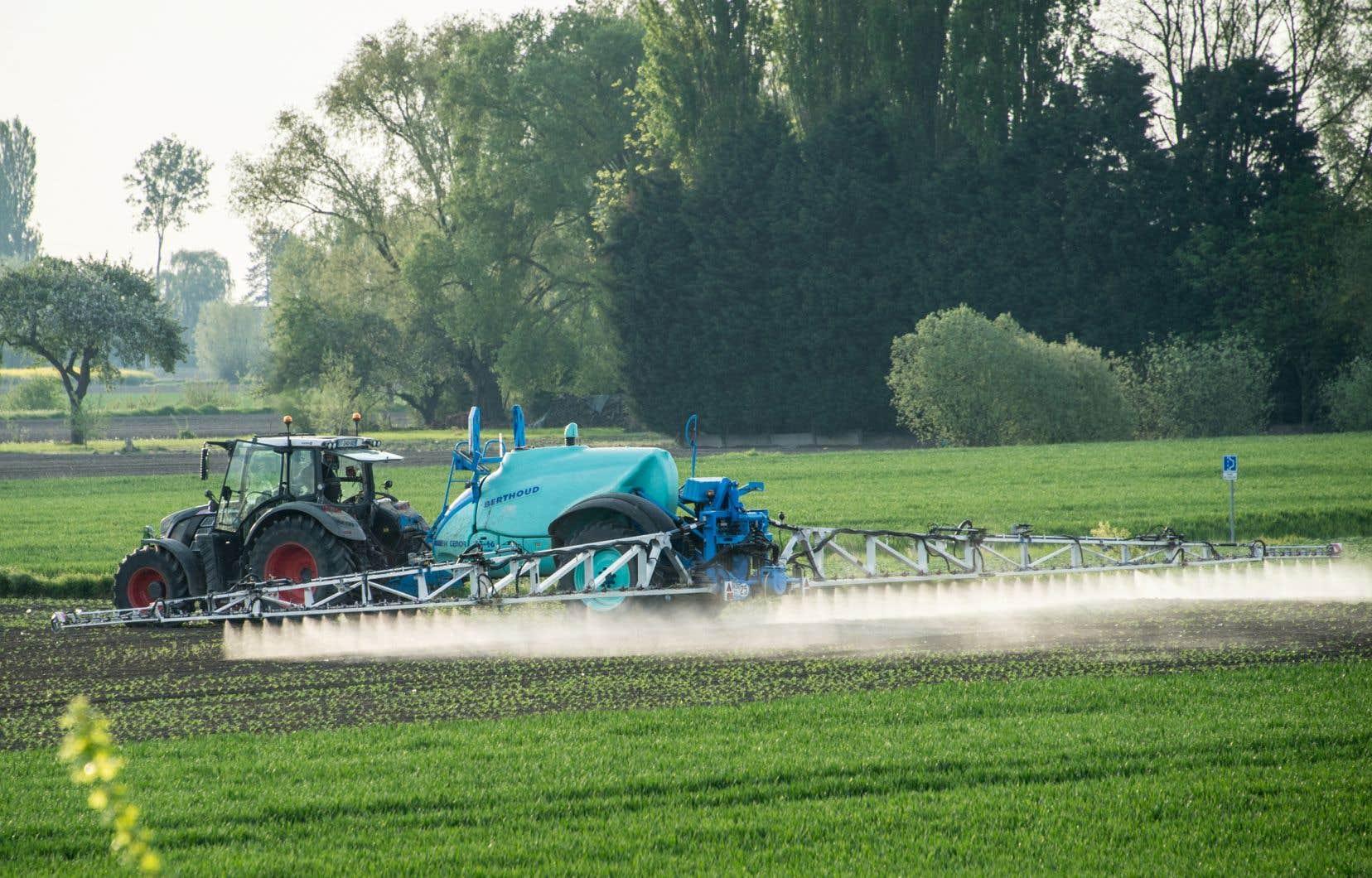 La Fondation David Suzuki va presser Québec d'interdire l'usage des pesticides en milieu agricole à moins de 2 kilomètres de maisons, de routes ou de bâtiments publics.