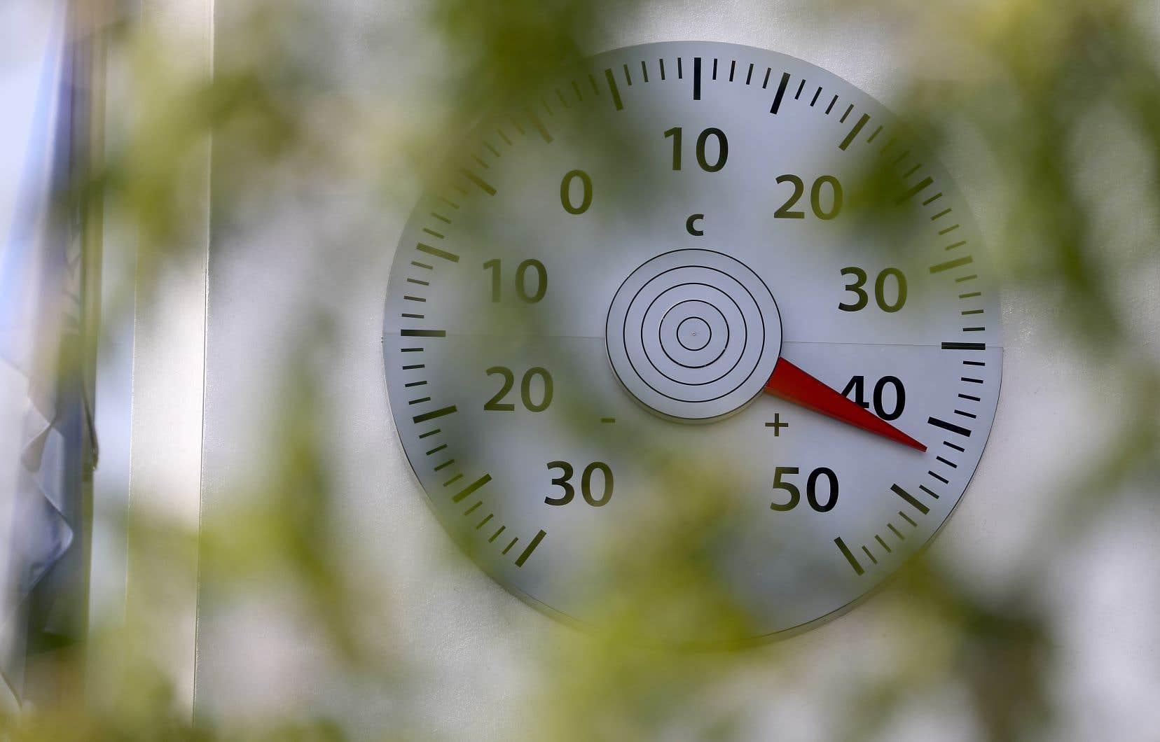 Le mois de juillet 2019, marqué par plusieurs canicules notamment en Europe, a battu le record absolu de température.