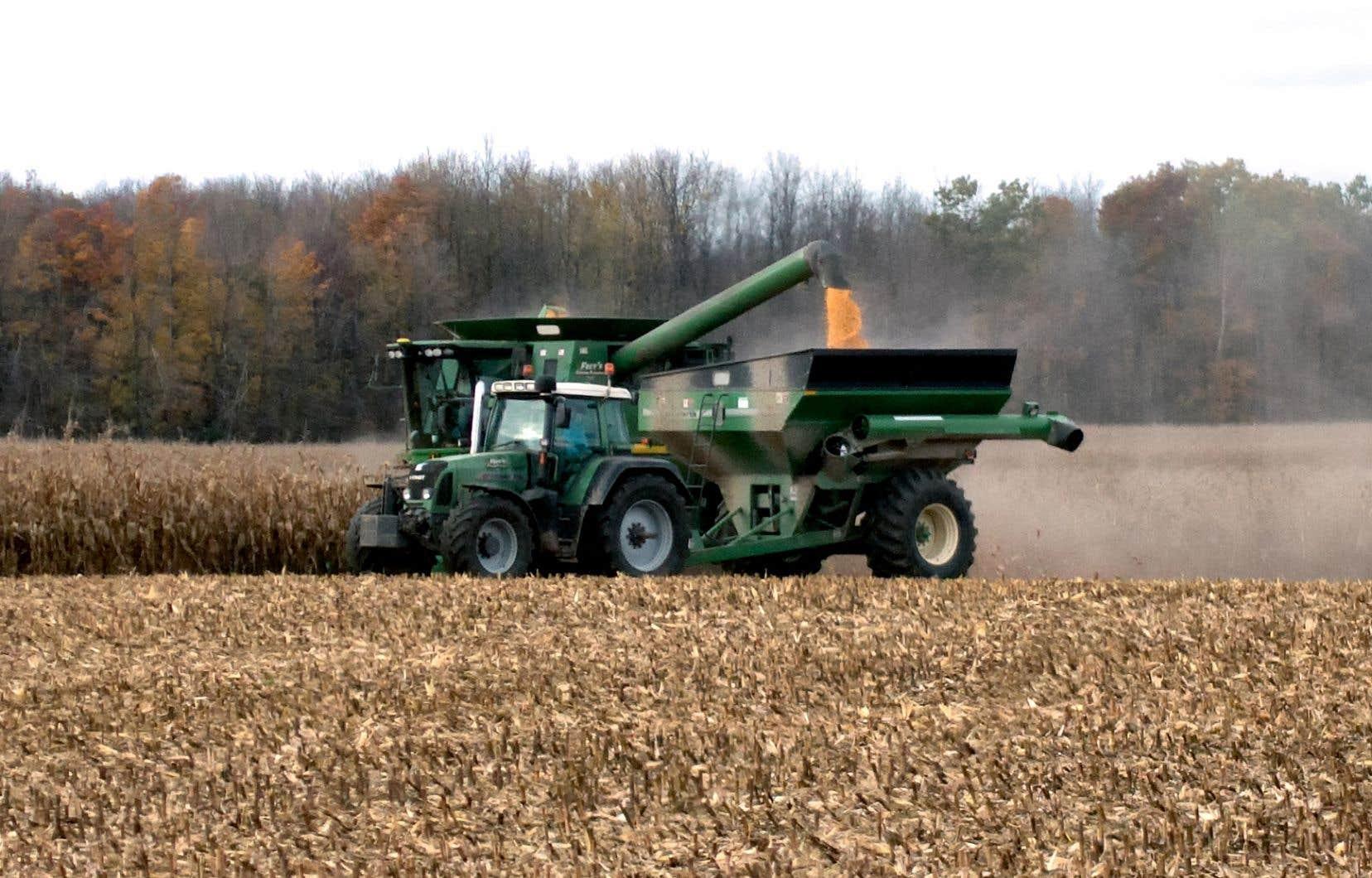 Le déficit des producteurs québécois avec leurs concurrents américains s'élève à environ 20000$ par ferme, peut-on lire dans le mémoire desProducteurs de grains du Québec.