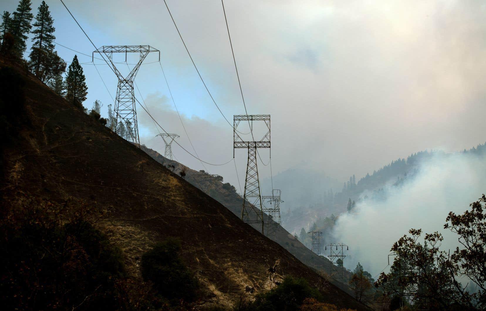 Pacific Gas & Electric est pointée du doigt pour ses installations vétustes et un entretien insuffisant de la végétation autour des lignes à haute tension. La responsabilité de la compagnie est mise en jeu dans les incendies de novembre 2018 (sur la photo).