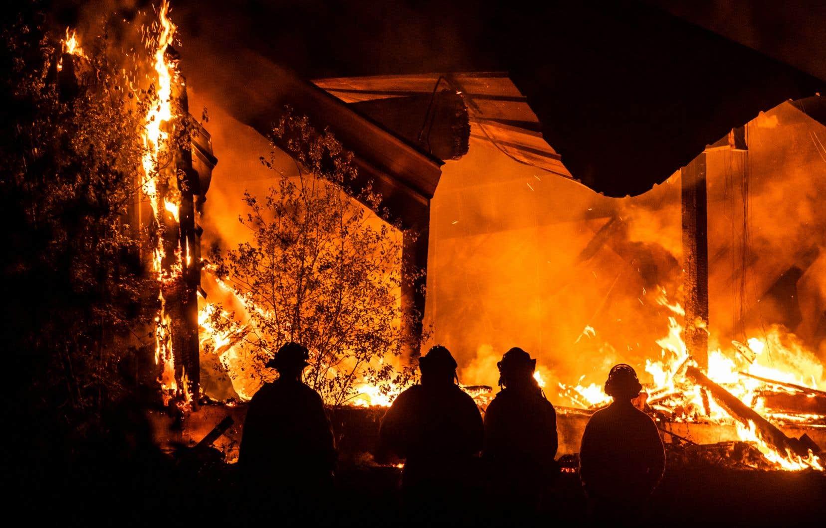 Le feu <em>Kincade</em>, qui brûle depuis une semaine, a détruit 206 bâtiments et plus de 90000 autres sont menacés par les flammes.