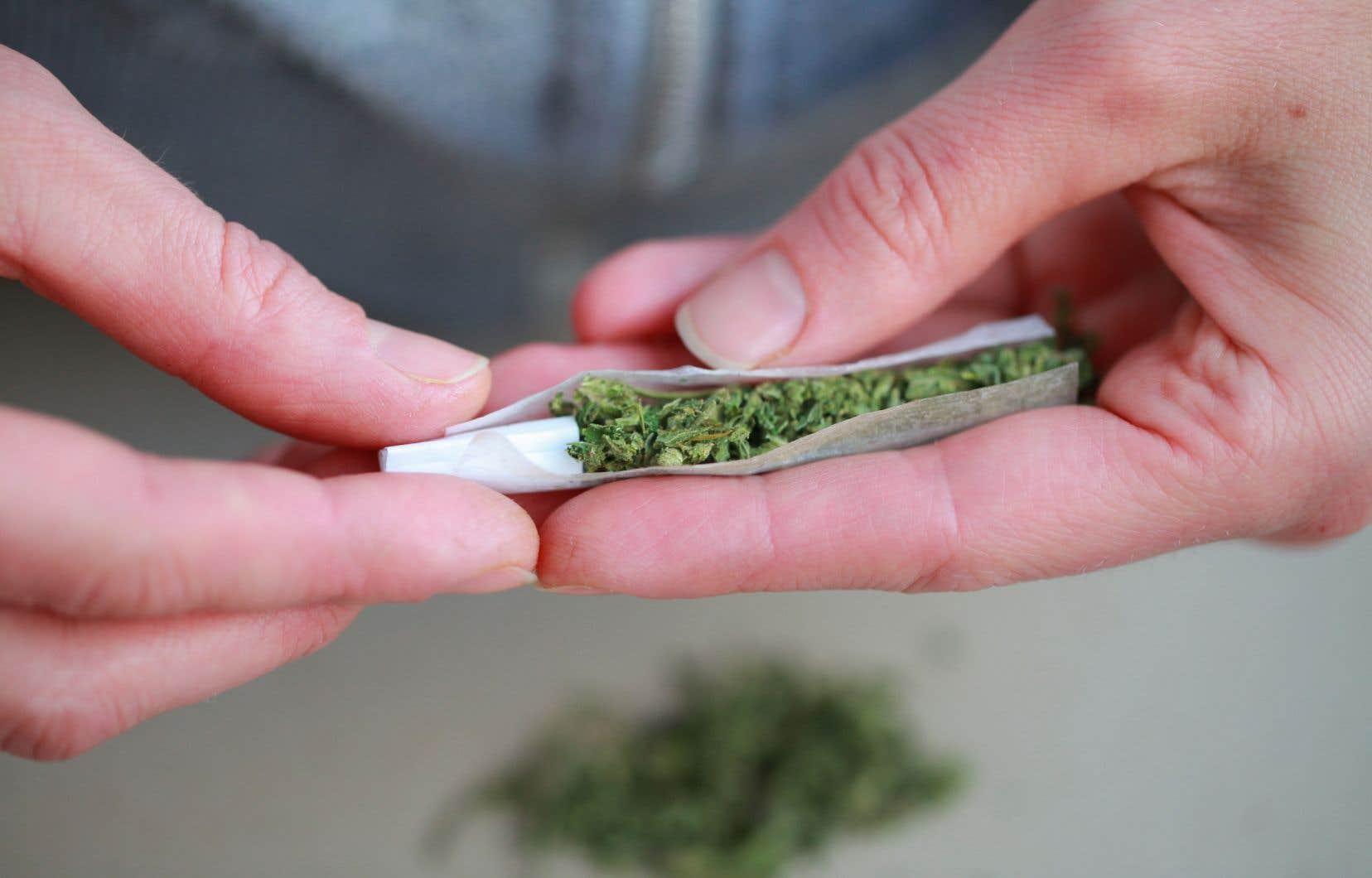 <p>L'âge moyen des consommateurs de cannabis est passé d'environ 29ans en 2004 à 38ans en 2019.</p>