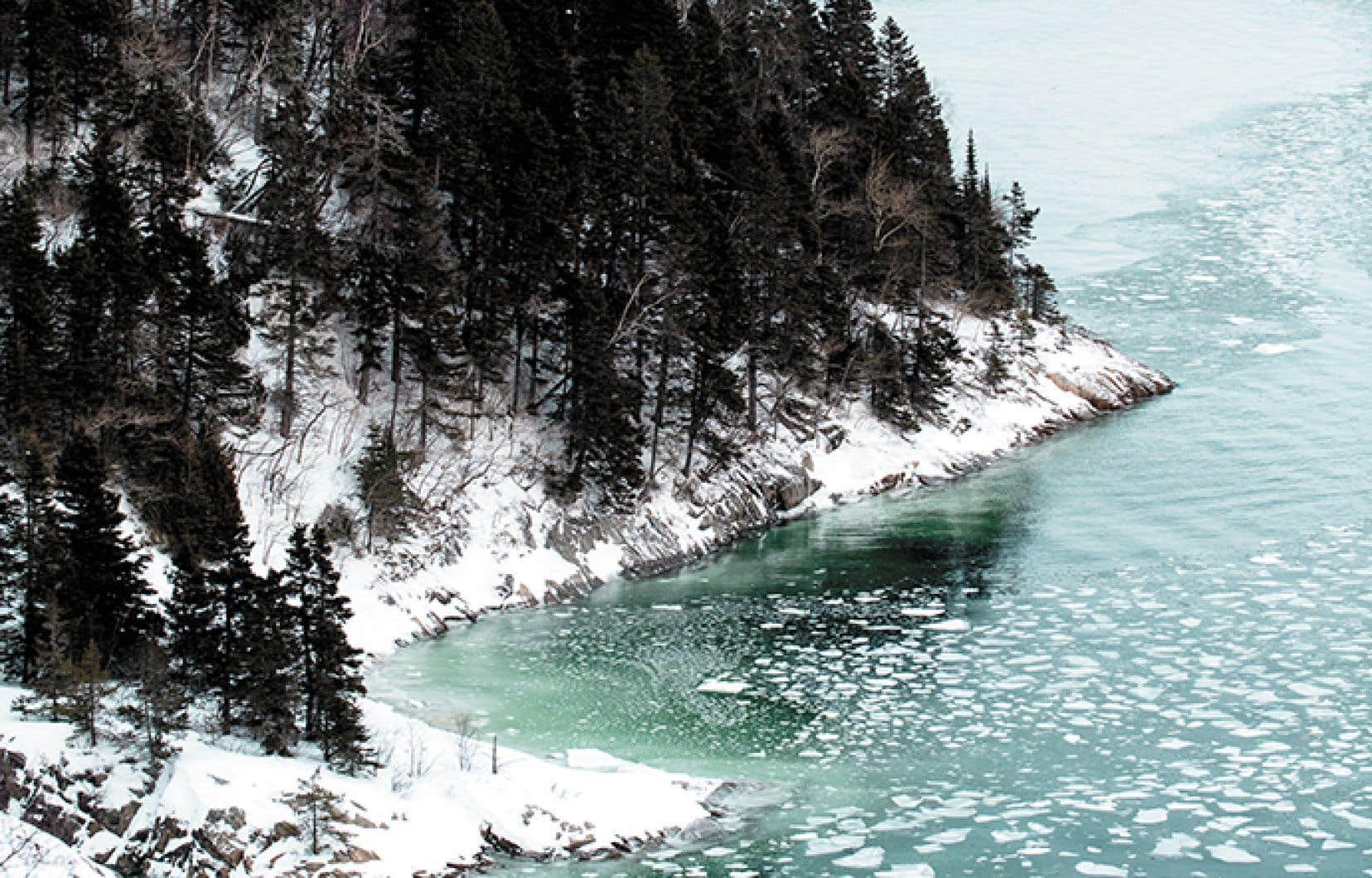 L'urgence climatique, d'abord, est certainement le défi le plus important auquel fera face le Québec dans la décennie à venir.