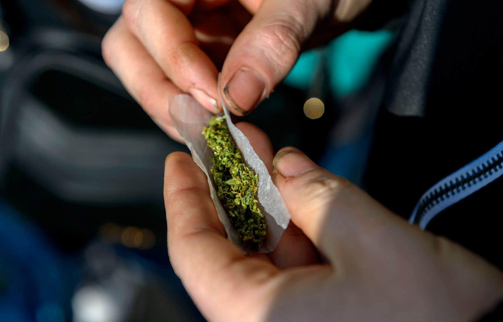 La prohibition n'empêchera pas les jeunes d'avoir accès au cannabis, estime l'auteur.