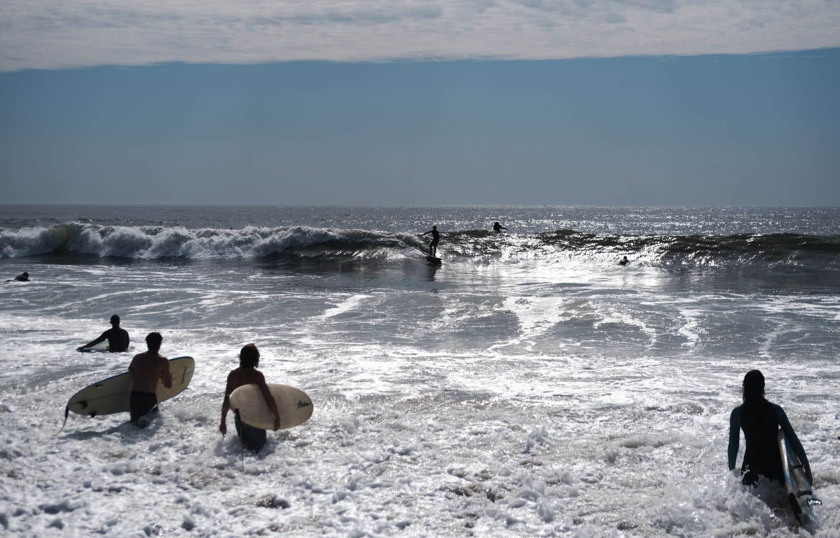 Des surfeurs new-yorkais profitent de la vague de chaleur qui s'est abattue sur la métropole américaine au début du mois d'octobre dernier.