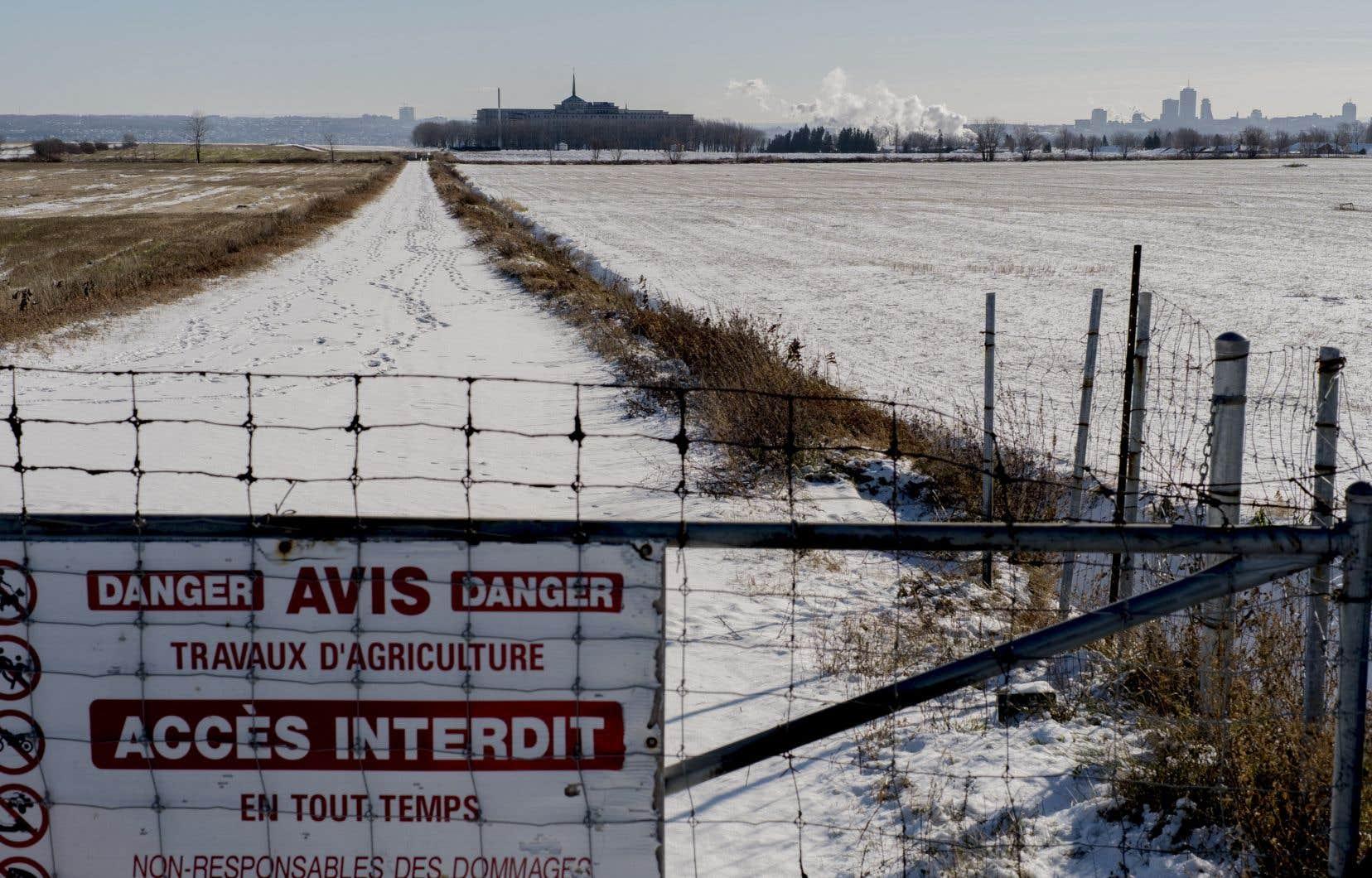 Un promoteur souhaite construire 6500 unités résidentielles sur les anciennes terres agricoles des Sœurs de la Charité.