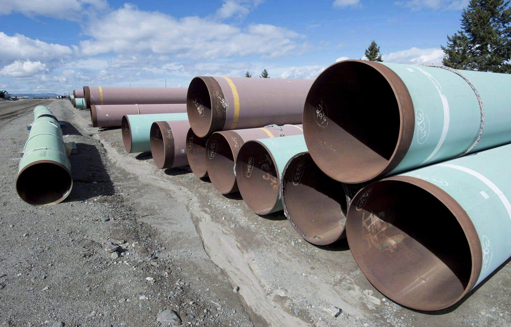 «L'oléoduc passant par le Québec serait presque cinq fois plus long que celui de Trans Mountain», souligne l'auteur.