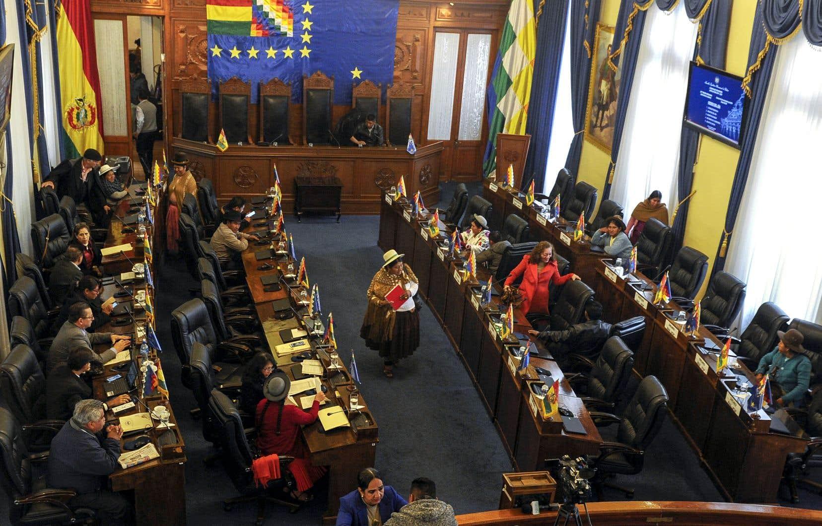 Le texte approuvé par le Sénat prévoit, entre autres mesures, l'annulation du scrutin du 20octobre qui a réélu Evo Morales.