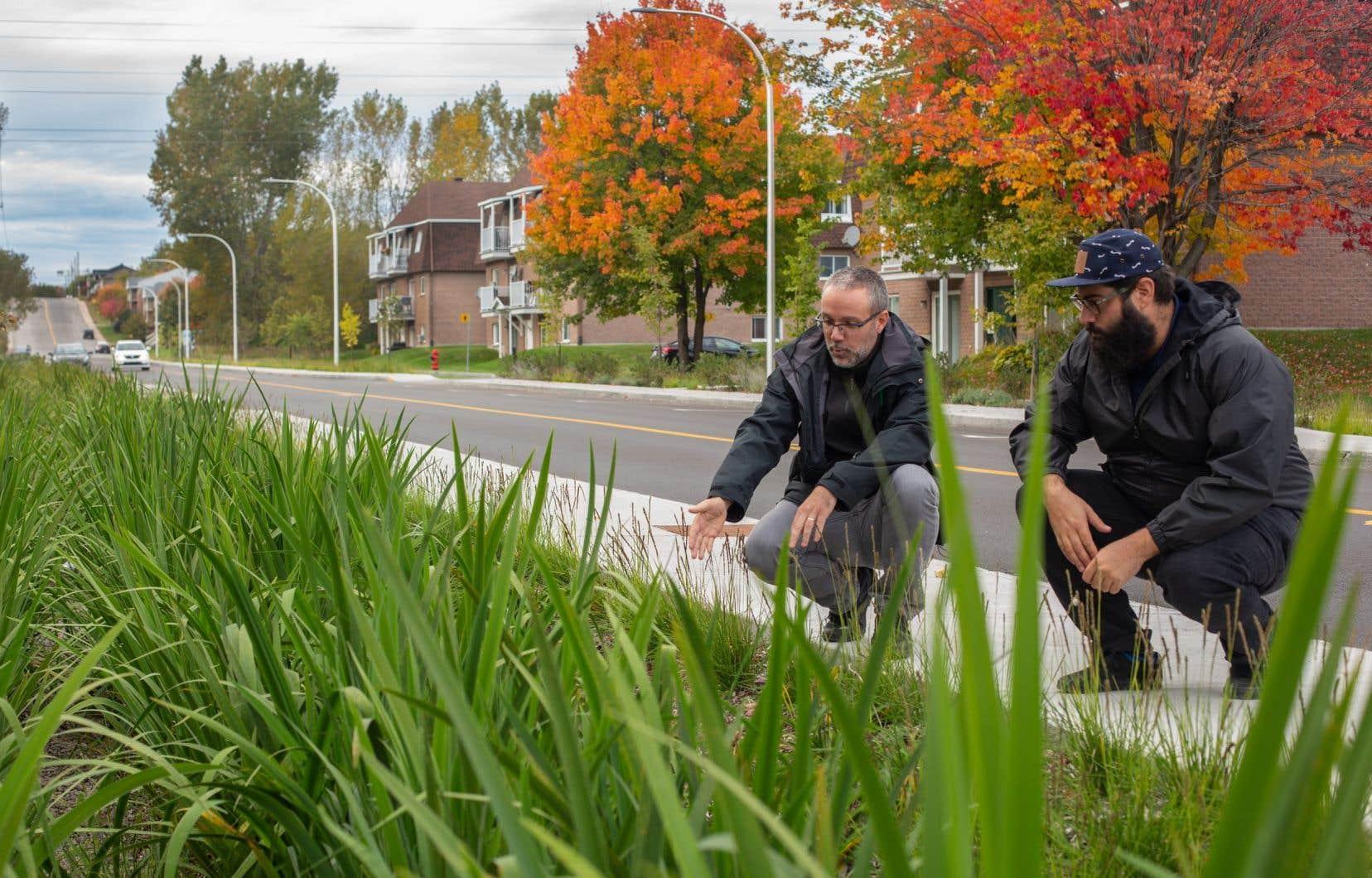 Julien St-Laurent (à gauche) et Alexis Petridis ont orchestré la réfection de la rue Saint-Maurice, à Trois-Rivières.