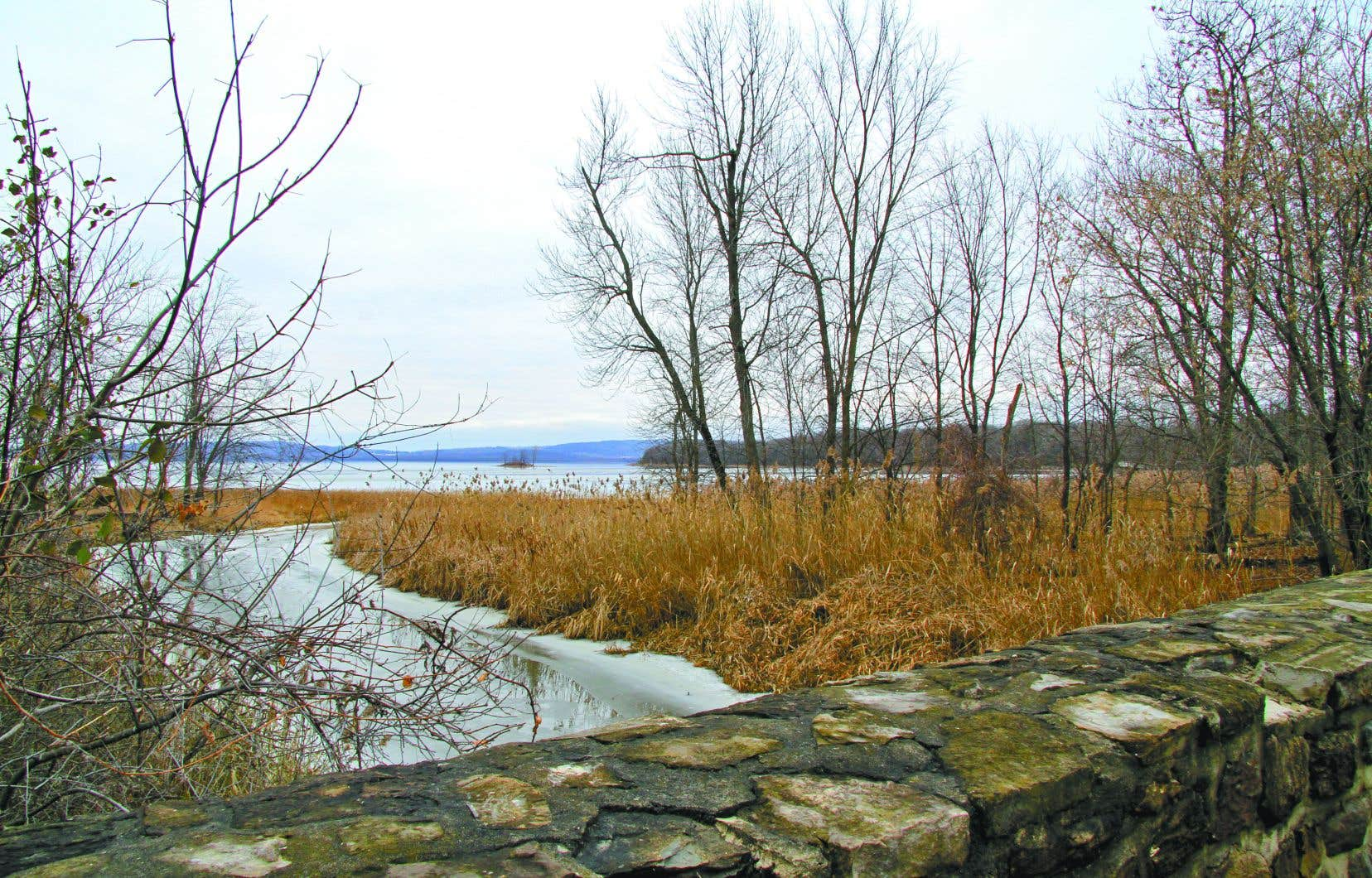 L'embouchure de la rivière à l'Orme, qui se déverse dans le lac des Deux Montagnes, fait partie du projet du Grand parc de l'Ouest.